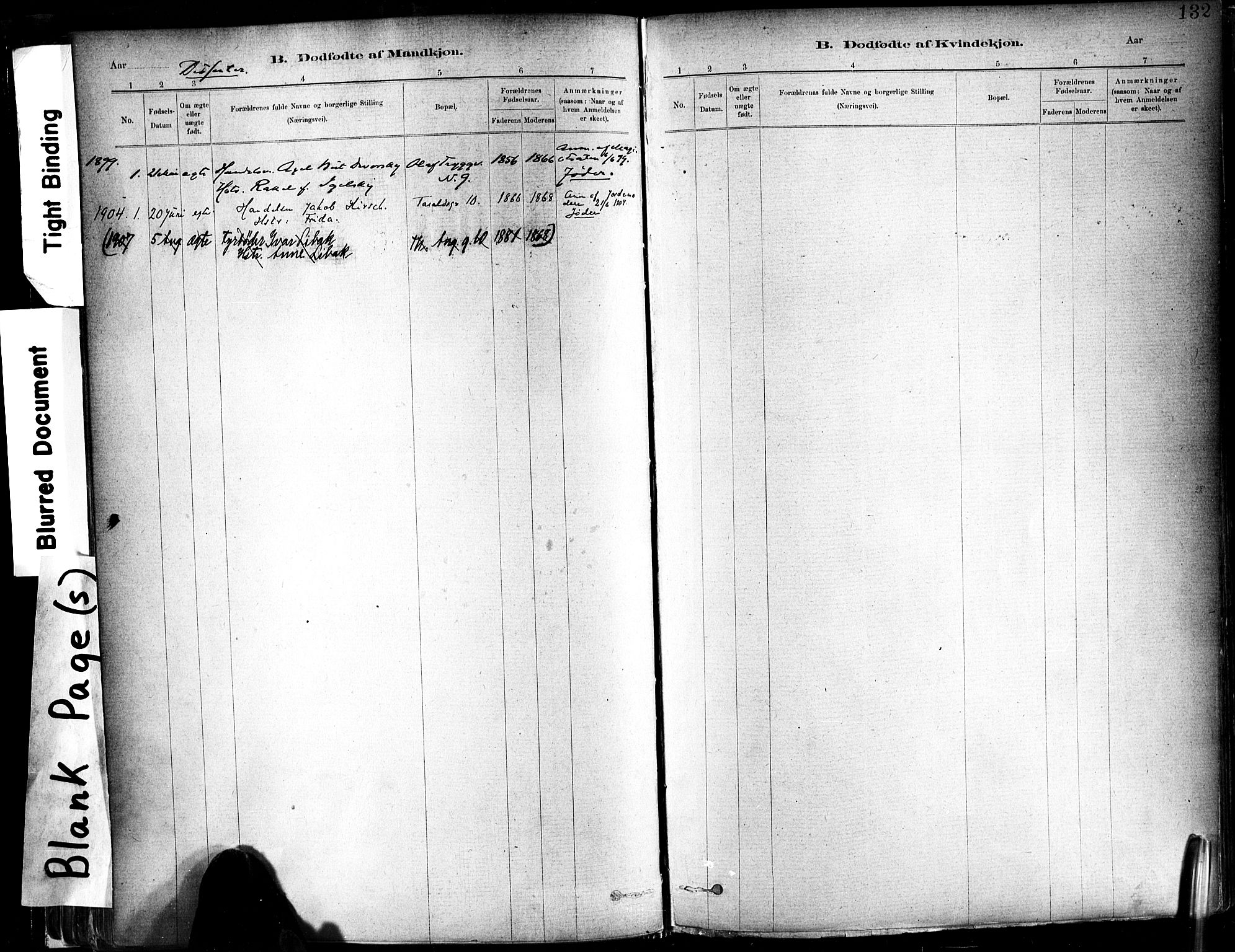 SAT, Ministerialprotokoller, klokkerbøker og fødselsregistre - Sør-Trøndelag, 602/L0119: Ministerialbok nr. 602A17, 1880-1901, s. 132