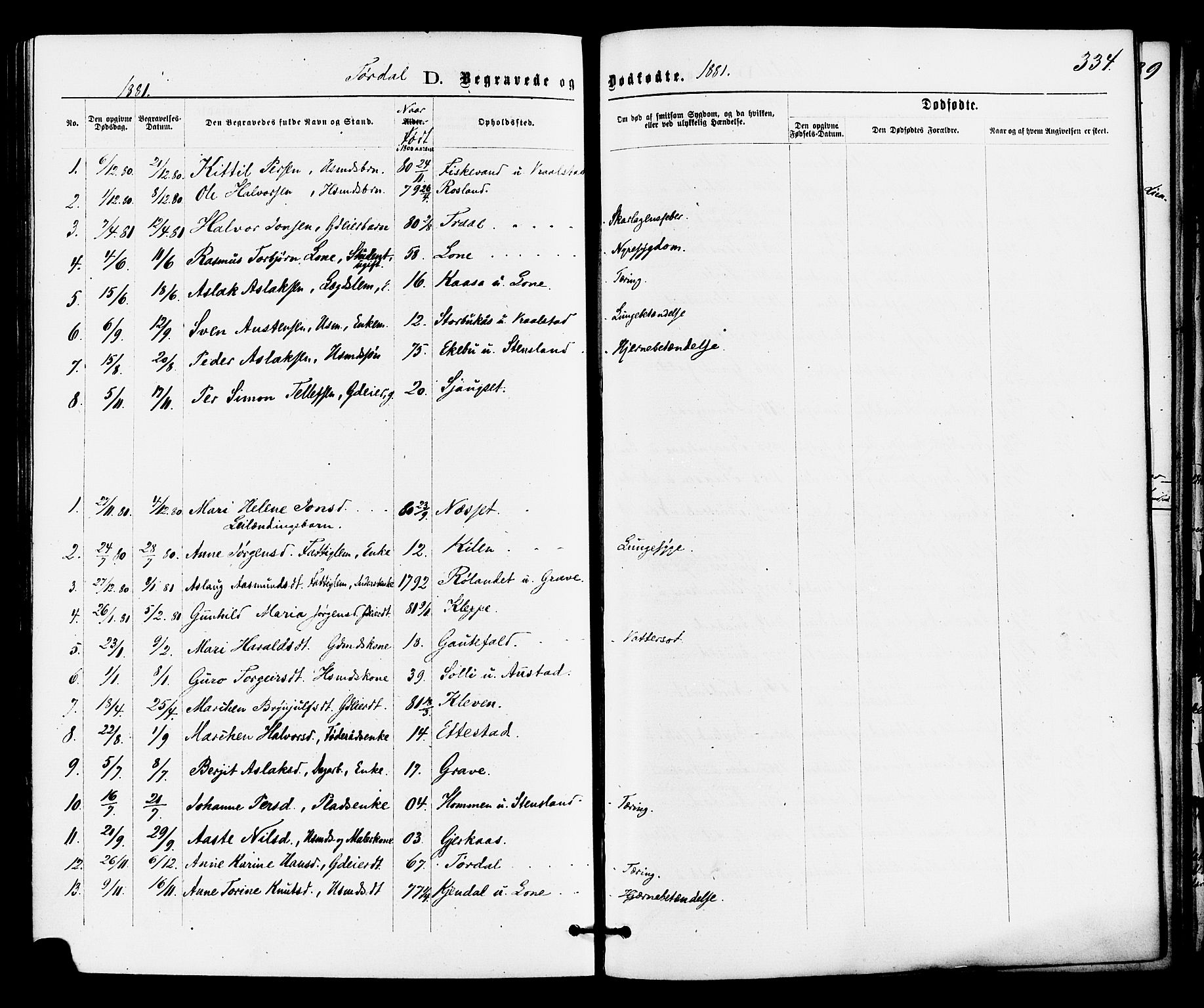 SAKO, Drangedal kirkebøker, F/Fa/L0009: Ministerialbok nr. 9 /2, 1872-1884, s. 334