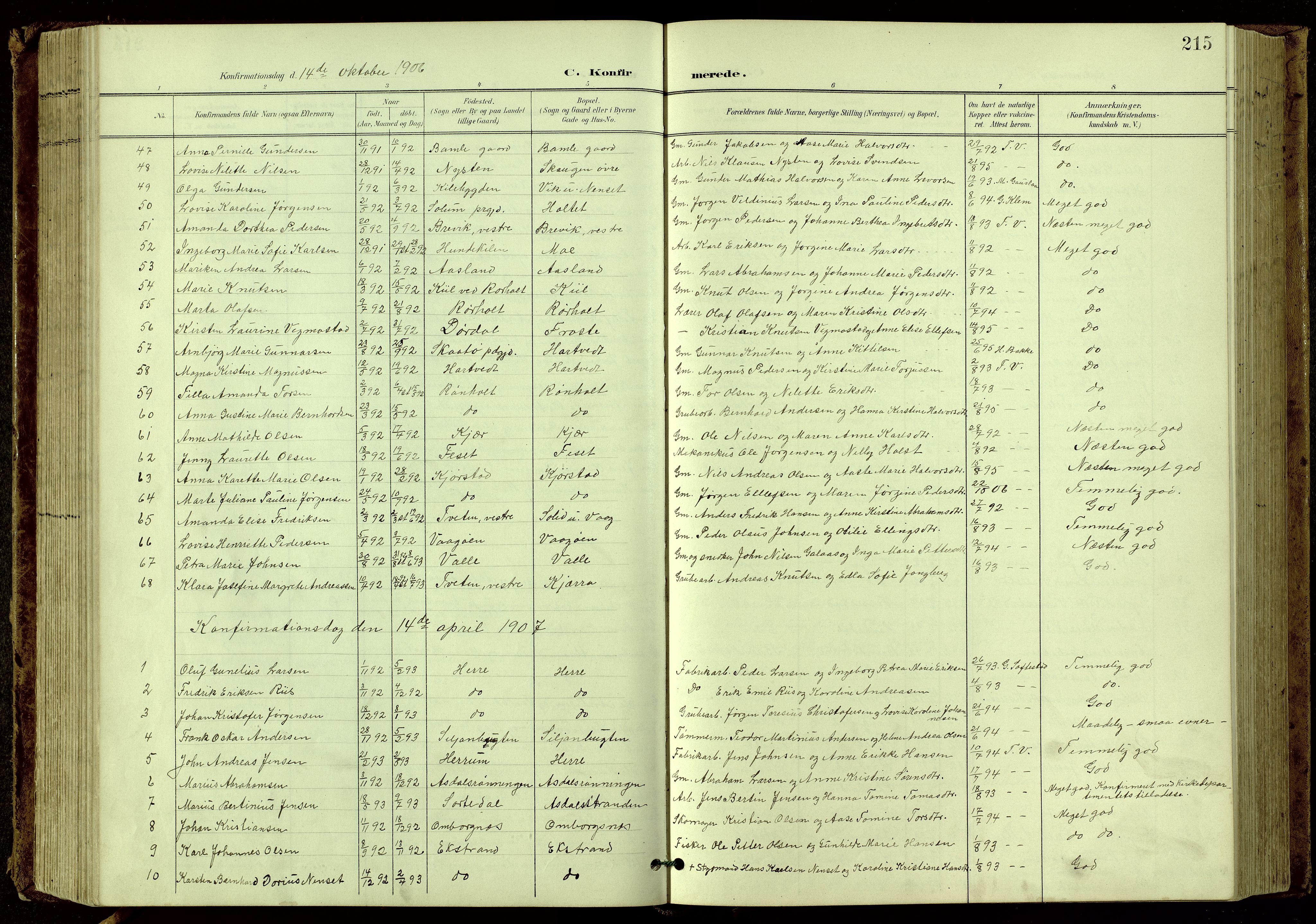 SAKO, Bamble kirkebøker, G/Ga/L0010: Klokkerbok nr. I 10, 1901-1919, s. 215