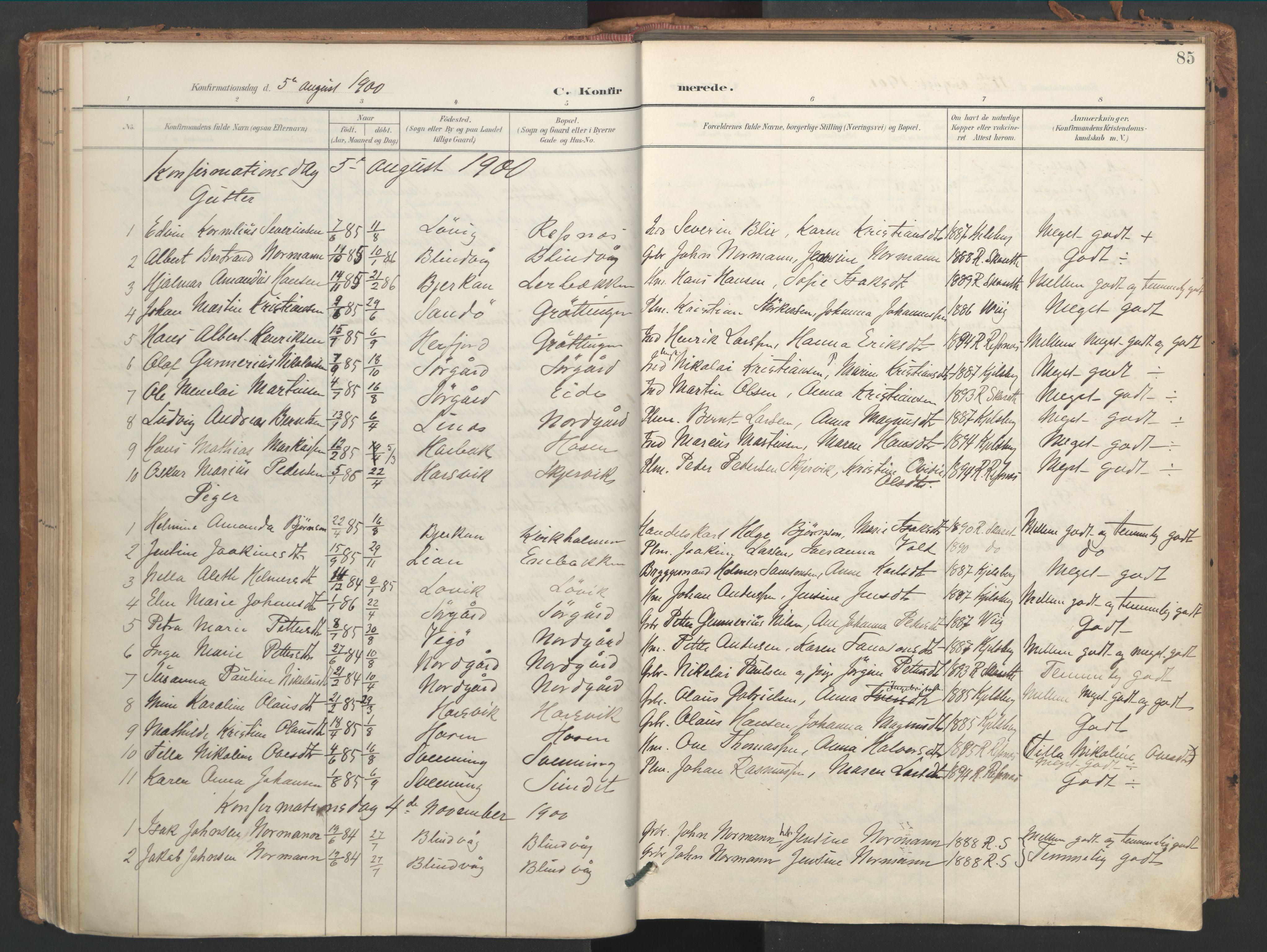 SAT, Ministerialprotokoller, klokkerbøker og fødselsregistre - Sør-Trøndelag, 656/L0693: Ministerialbok nr. 656A02, 1894-1913, s. 85