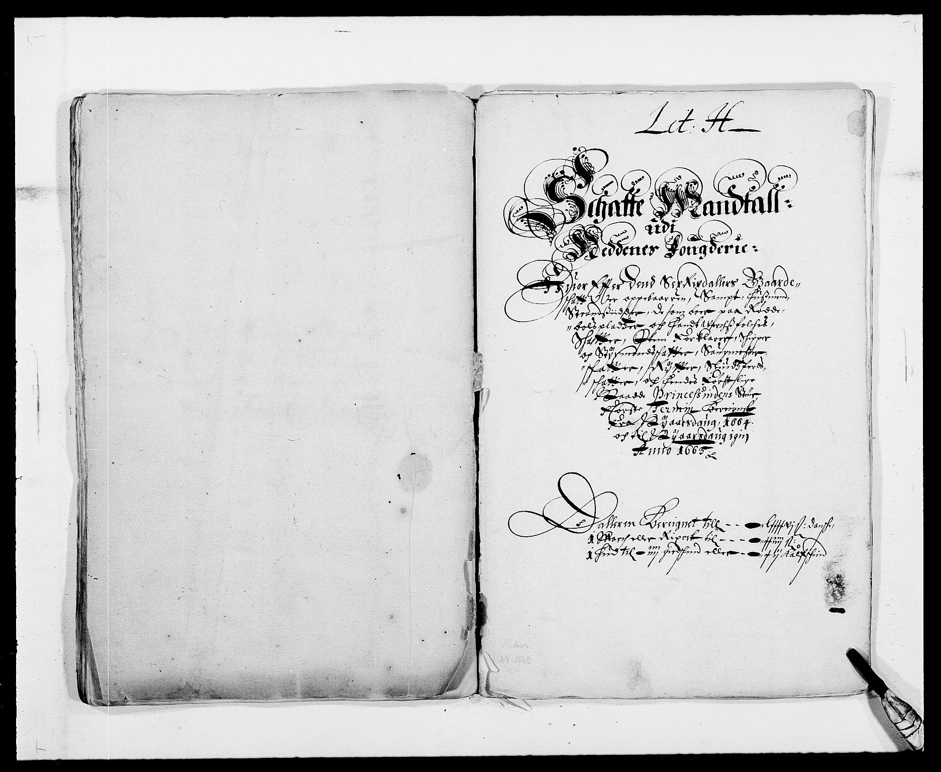 RA, Rentekammeret inntil 1814, Reviderte regnskaper, Fogderegnskap, R39/L2296: Fogderegnskap Nedenes, 1664-1666, s. 100