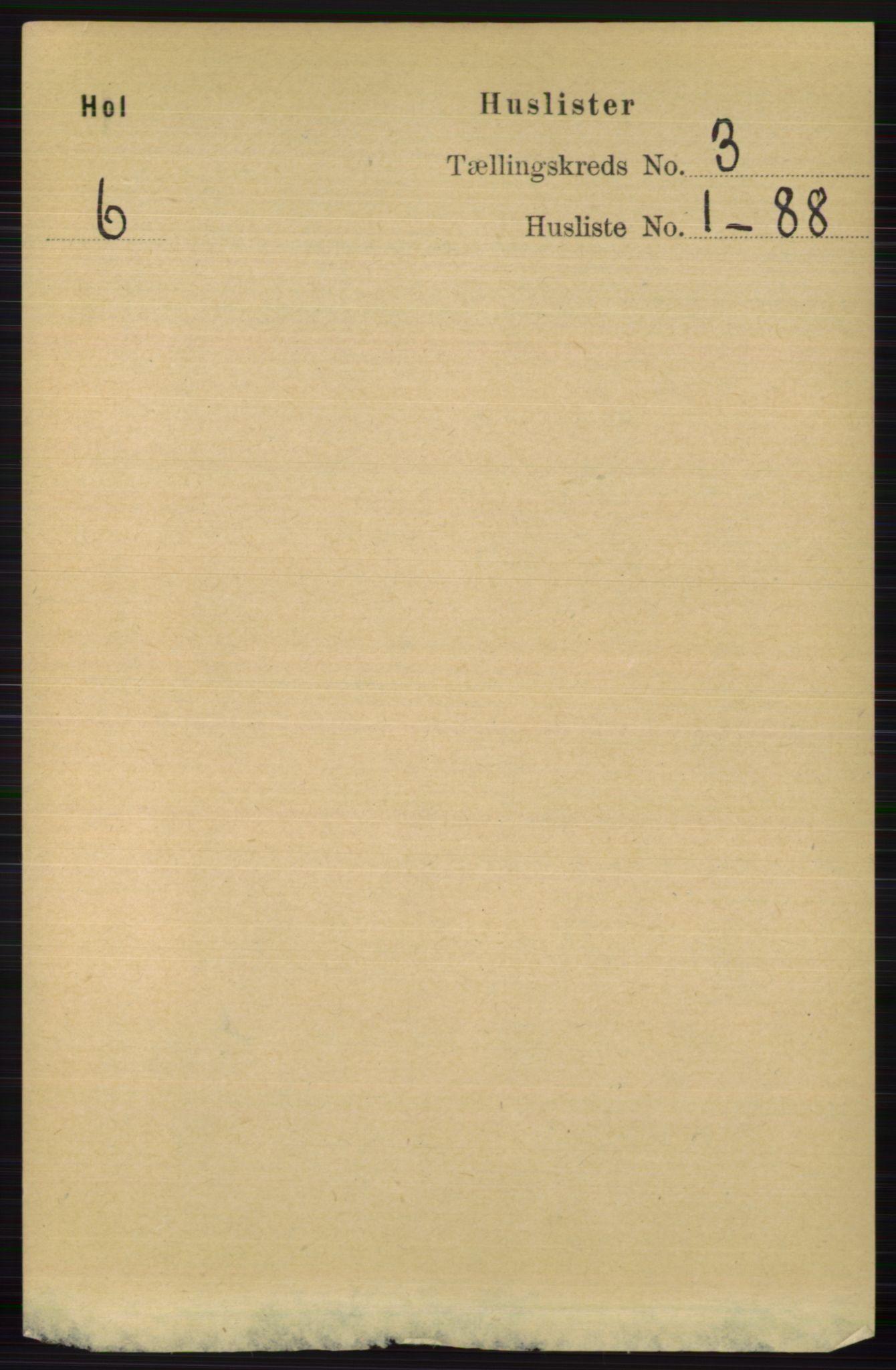 RA, Folketelling 1891 for 0620 Hol herred, 1891, s. 656