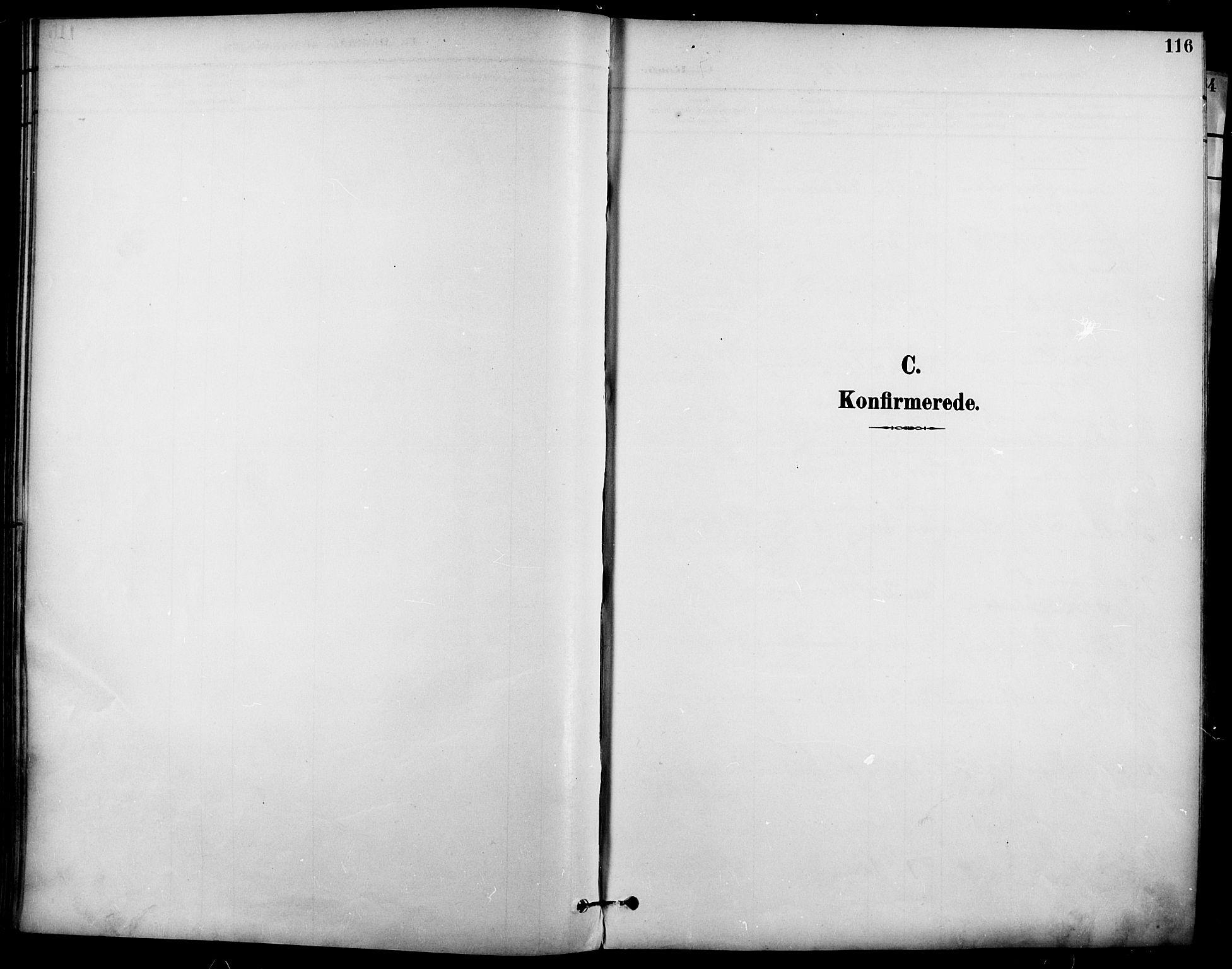SAO, Garnisonsmenigheten Kirkebøker, F/Fa/L0013: Ministerialbok nr. 13, 1894-1904, s. 116