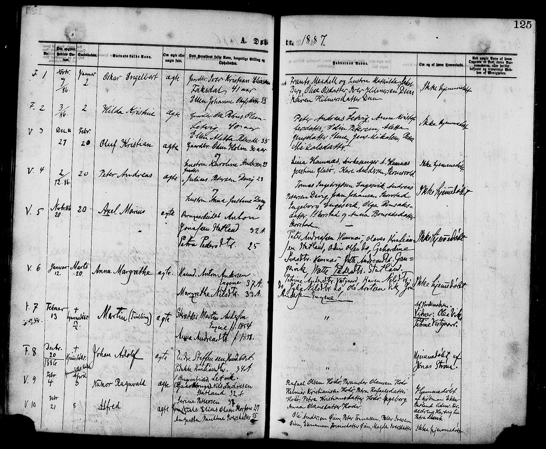 SAT, Ministerialprotokoller, klokkerbøker og fødselsregistre - Nord-Trøndelag, 773/L0616: Ministerialbok nr. 773A07, 1870-1887, s. 125