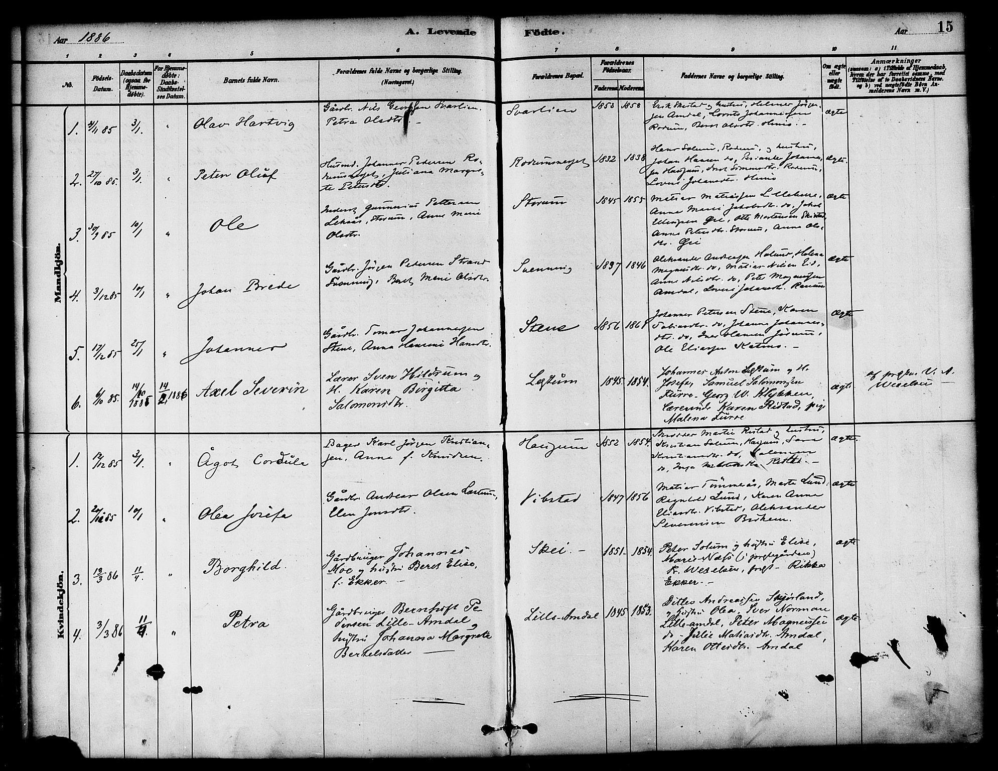 SAT, Ministerialprotokoller, klokkerbøker og fødselsregistre - Nord-Trøndelag, 764/L0555: Ministerialbok nr. 764A10, 1881-1896, s. 15