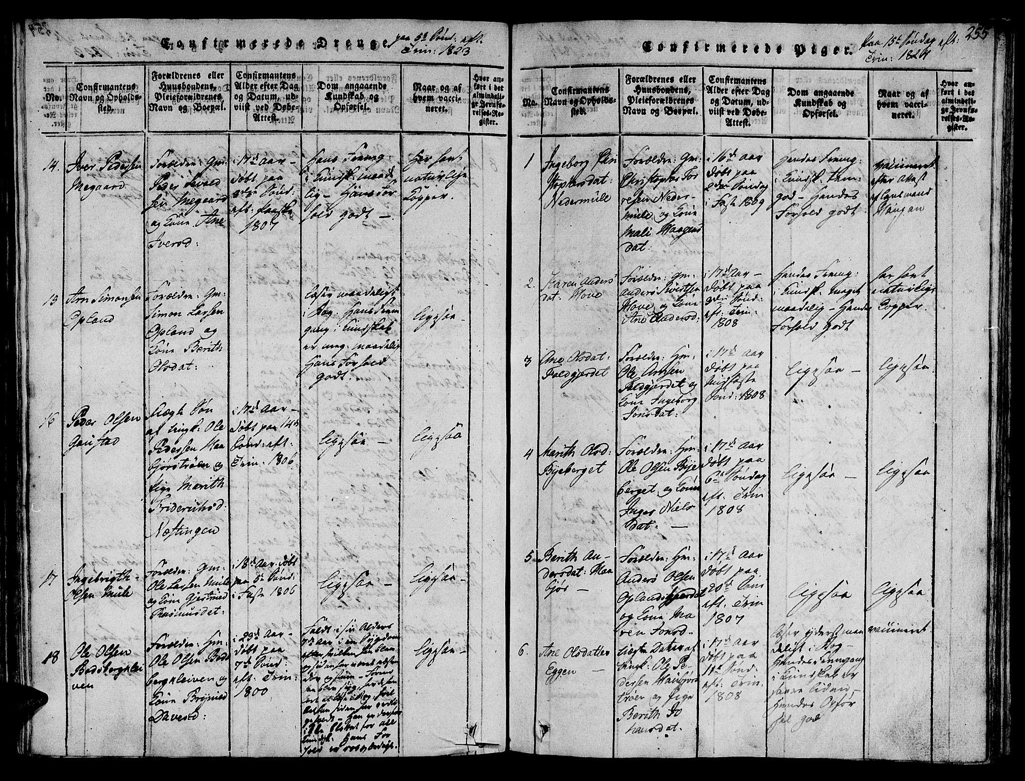 SAT, Ministerialprotokoller, klokkerbøker og fødselsregistre - Sør-Trøndelag, 612/L0372: Ministerialbok nr. 612A06 /1, 1816-1828, s. 255