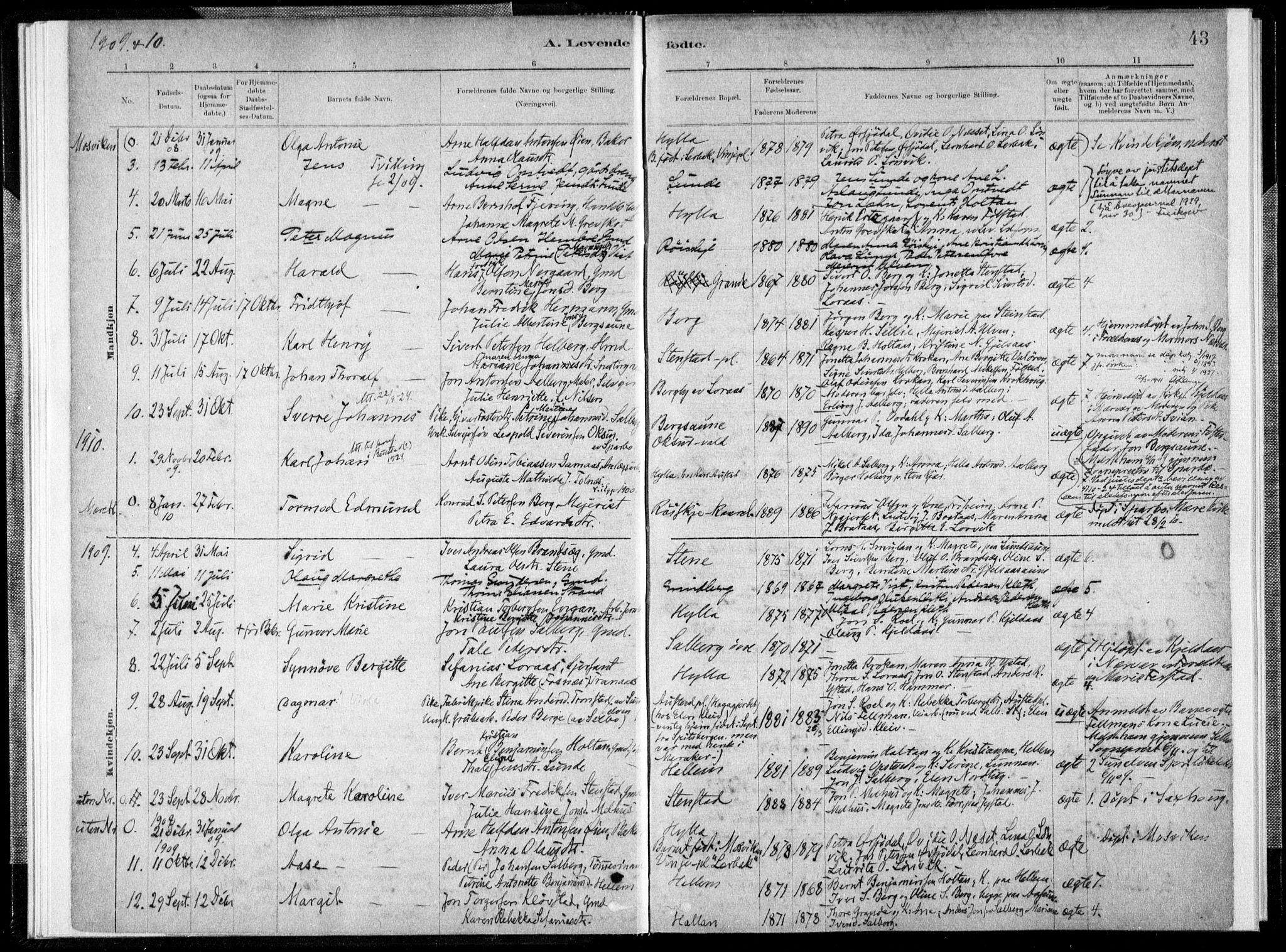 SAT, Ministerialprotokoller, klokkerbøker og fødselsregistre - Nord-Trøndelag, 731/L0309: Ministerialbok nr. 731A01, 1879-1918, s. 43