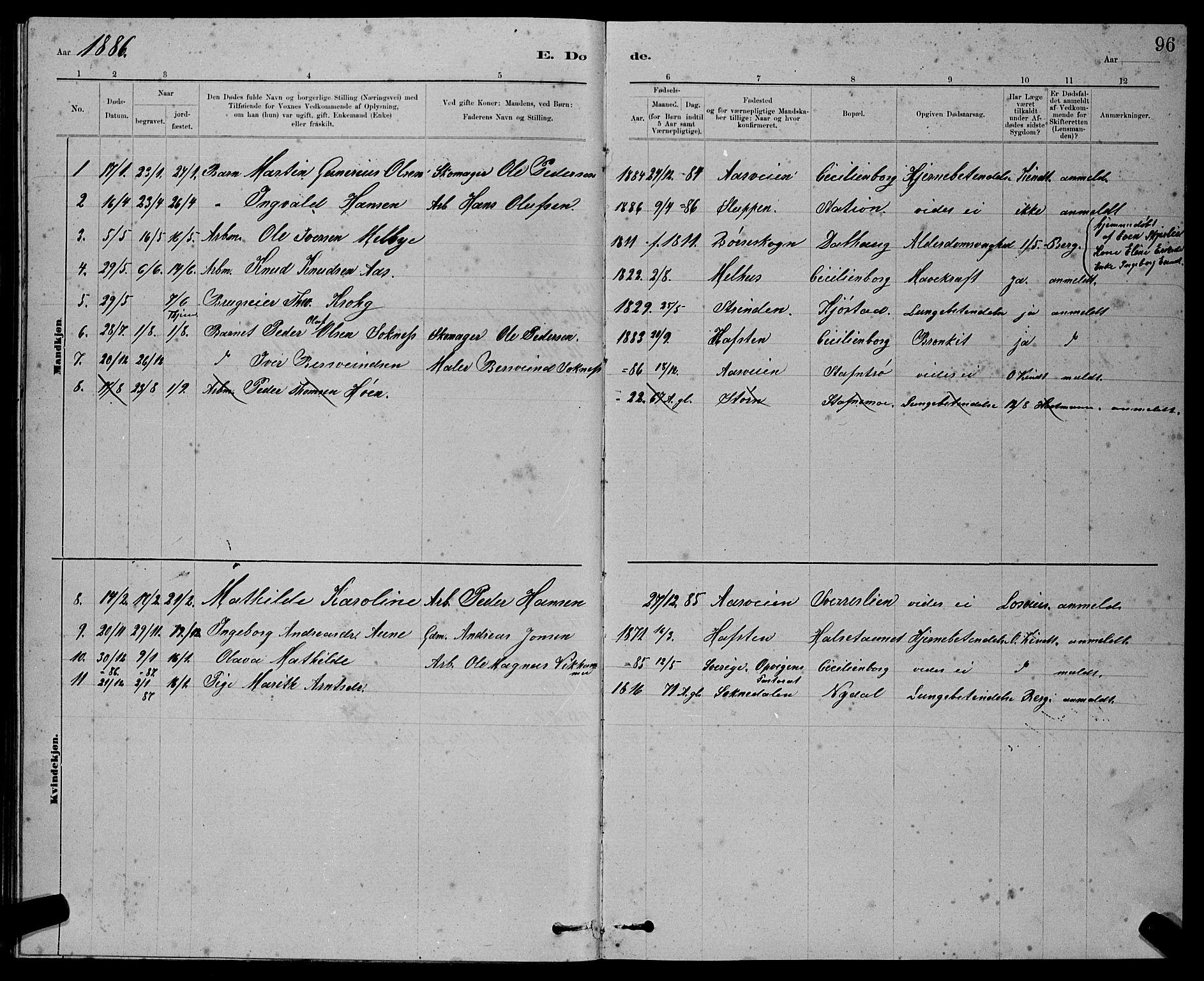SAT, Ministerialprotokoller, klokkerbøker og fødselsregistre - Sør-Trøndelag, 611/L0354: Klokkerbok nr. 611C02, 1881-1896, s. 96