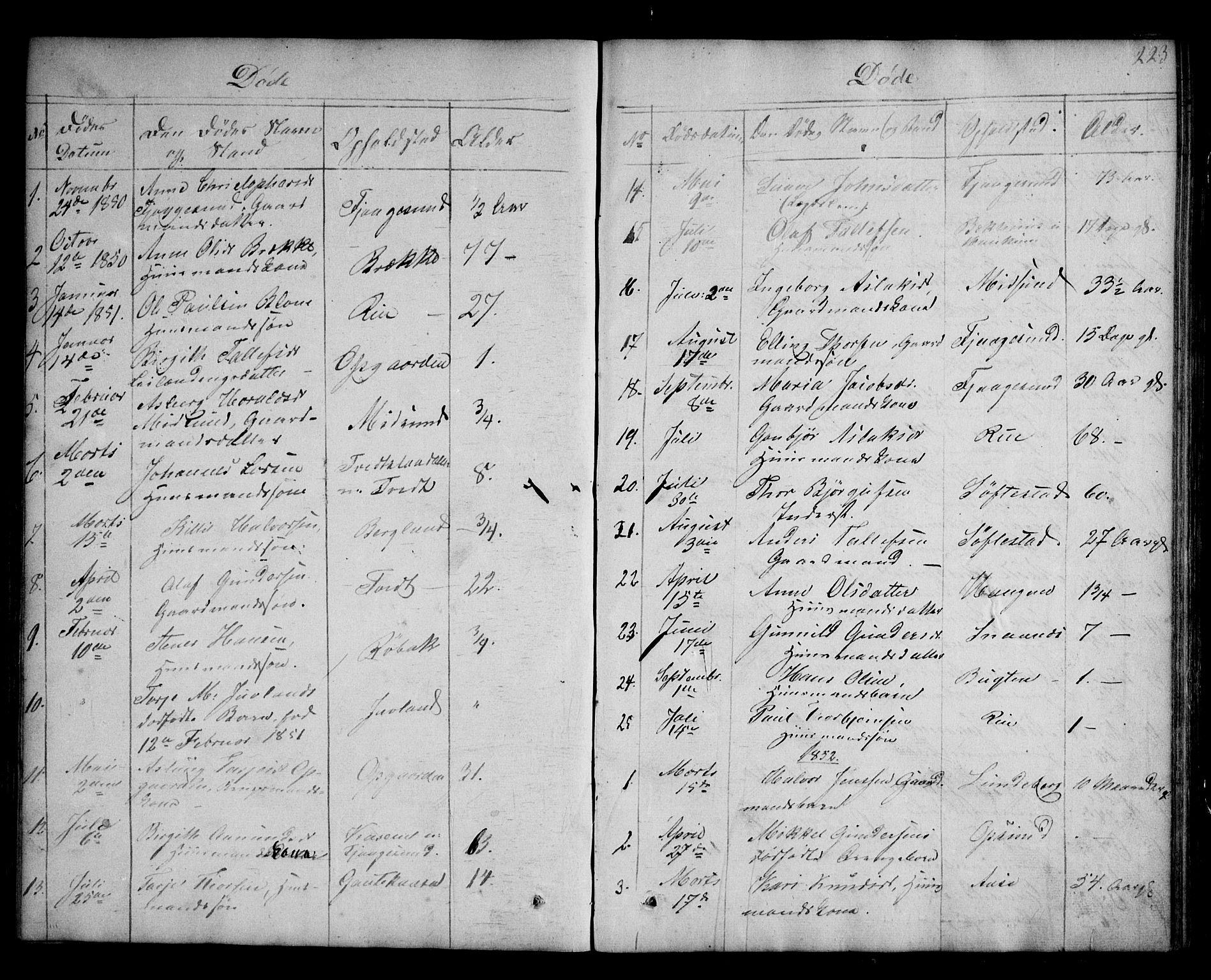 SAKO, Kviteseid kirkebøker, G/Ga/L0001: Klokkerbok nr. I 1, 1850-1893, s. 223