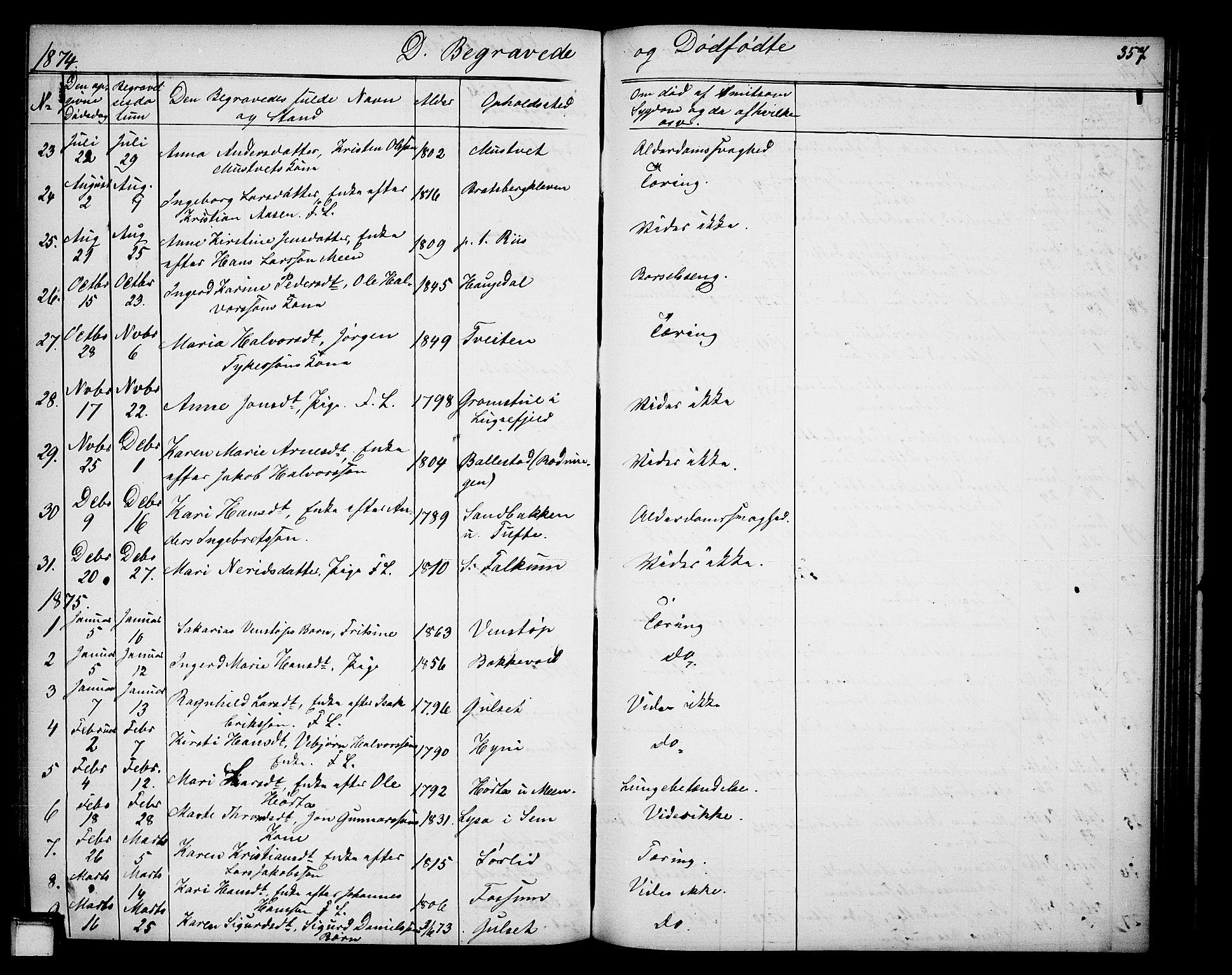 SAKO, Gjerpen kirkebøker, G/Ga/L0001: Klokkerbok nr. I 1, 1864-1882, s. 357