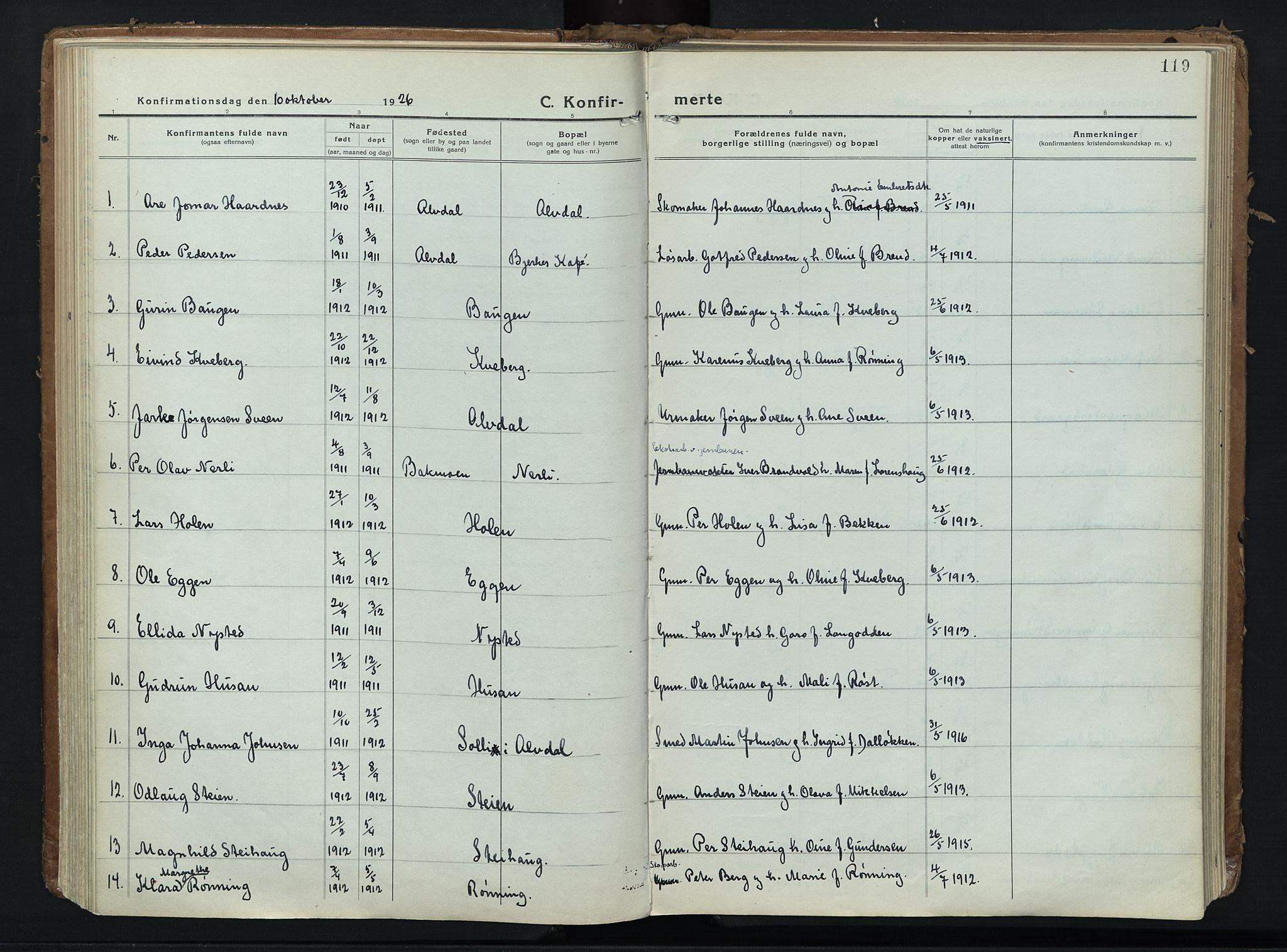 SAH, Alvdal prestekontor, Ministerialbok nr. 6, 1920-1937, s. 119