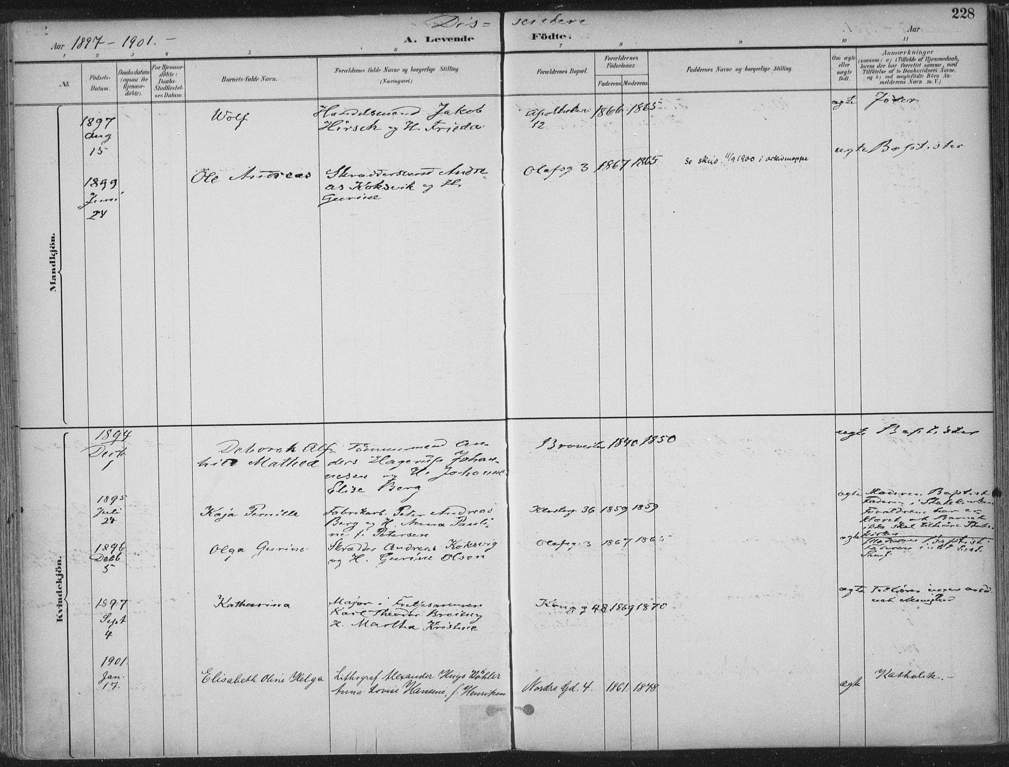 SAT, Ministerialprotokoller, klokkerbøker og fødselsregistre - Sør-Trøndelag, 601/L0062: Ministerialbok nr. 601A30, 1891-1911, s. 228