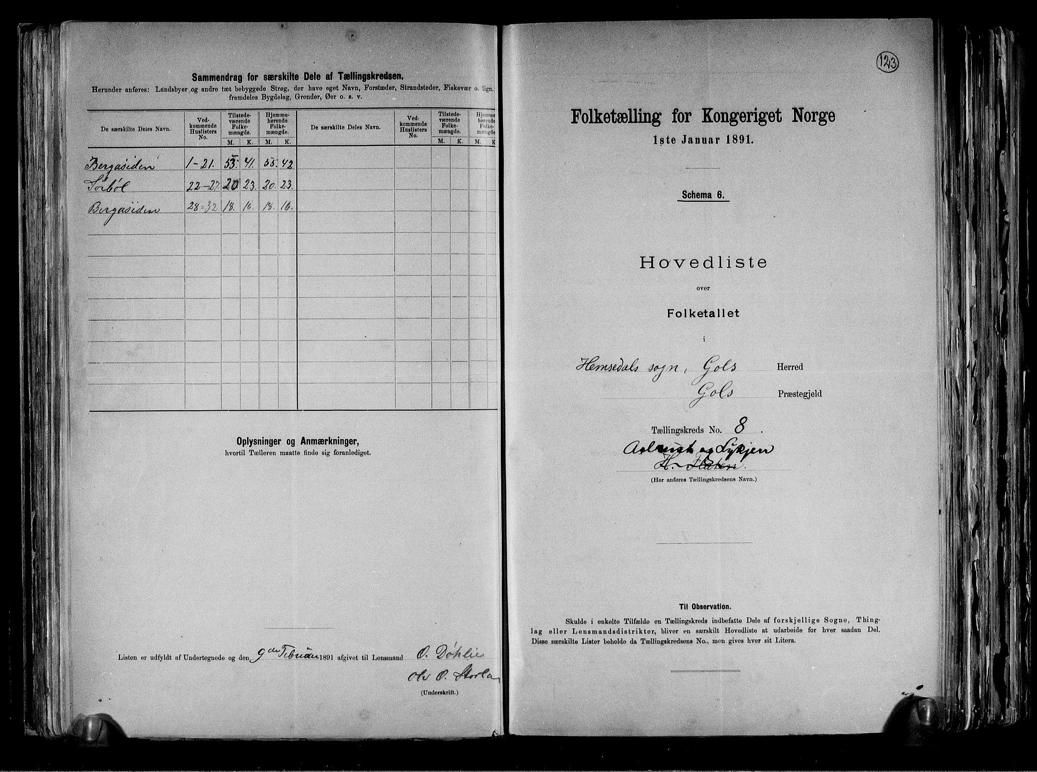 RA, Folketelling 1891 for 0617 Gol og Hemsedal herred, 1891, s. 18