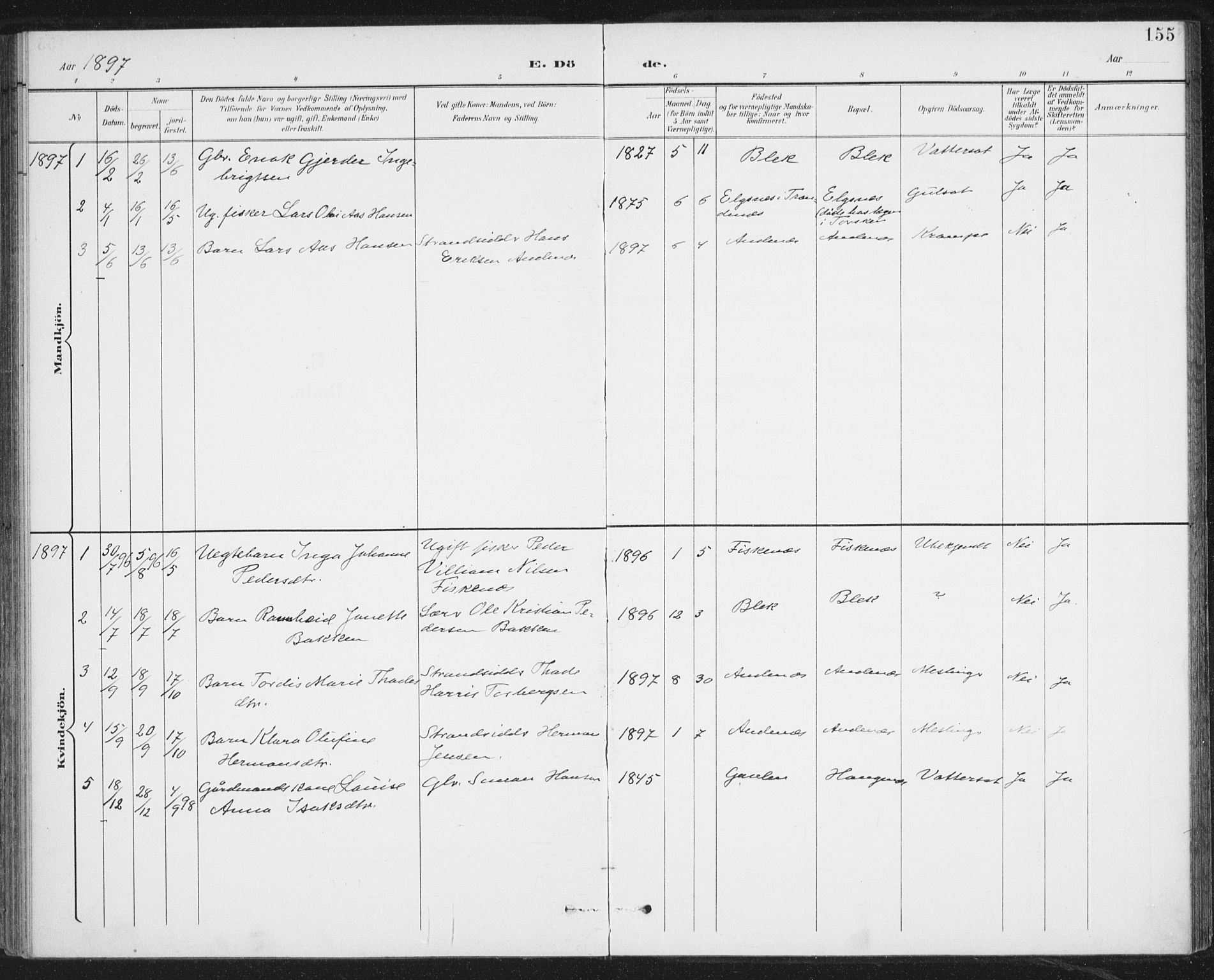 SAT, Ministerialprotokoller, klokkerbøker og fødselsregistre - Nordland, 899/L1437: Ministerialbok nr. 899A05, 1897-1908, s. 155
