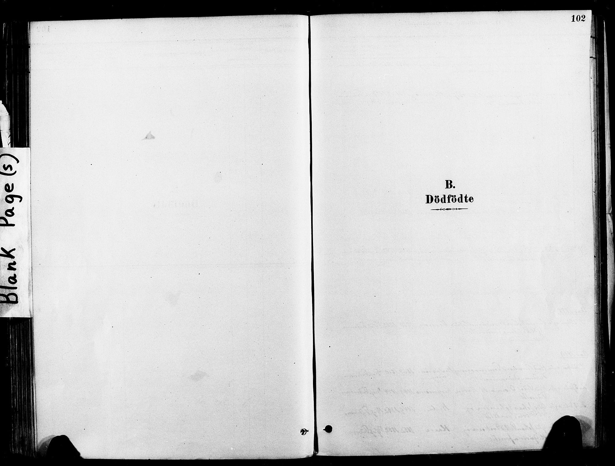 SAT, Ministerialprotokoller, klokkerbøker og fødselsregistre - Nord-Trøndelag, 709/L0077: Ministerialbok nr. 709A17, 1880-1895, s. 102