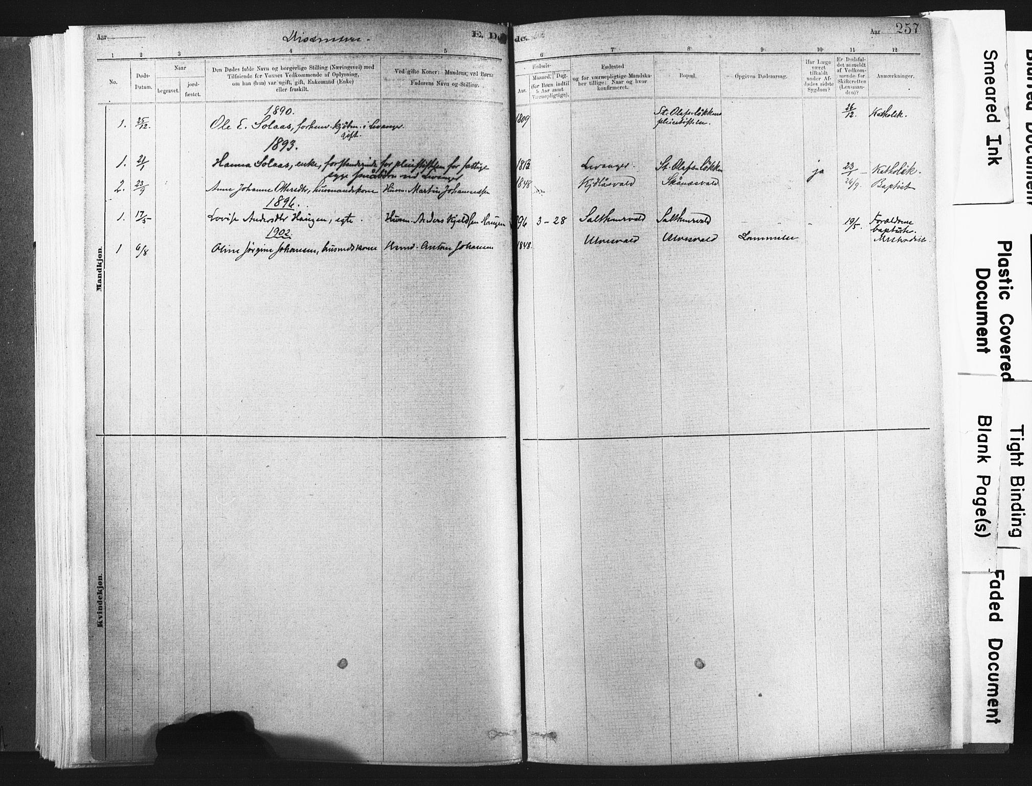 SAT, Ministerialprotokoller, klokkerbøker og fødselsregistre - Nord-Trøndelag, 721/L0207: Ministerialbok nr. 721A02, 1880-1911, s. 257