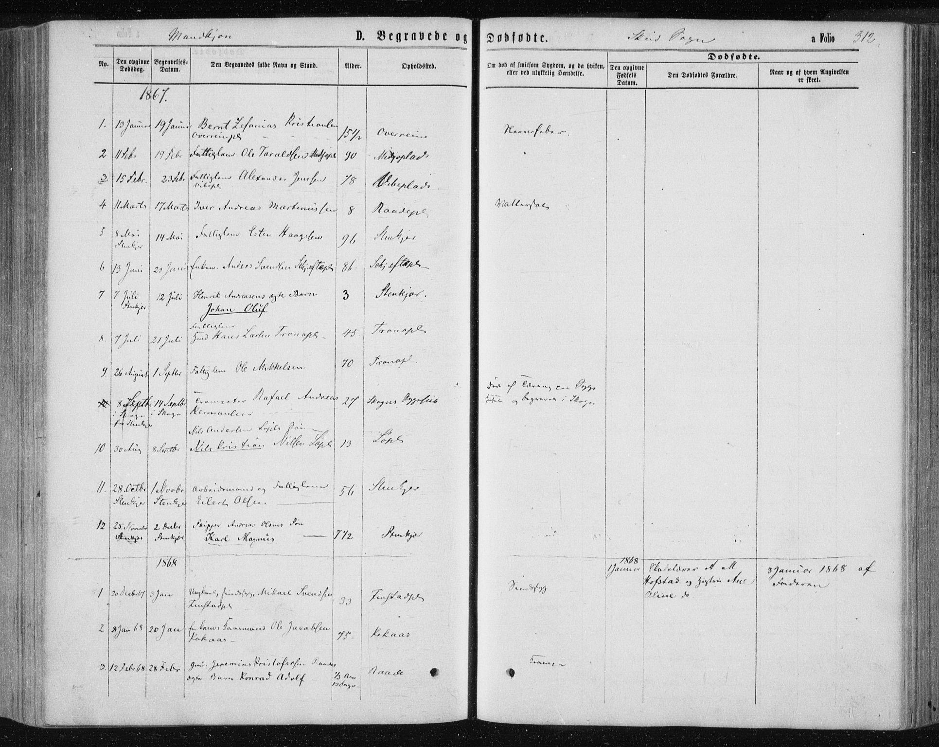 SAT, Ministerialprotokoller, klokkerbøker og fødselsregistre - Nord-Trøndelag, 735/L0345: Ministerialbok nr. 735A08 /2, 1863-1872, s. 312