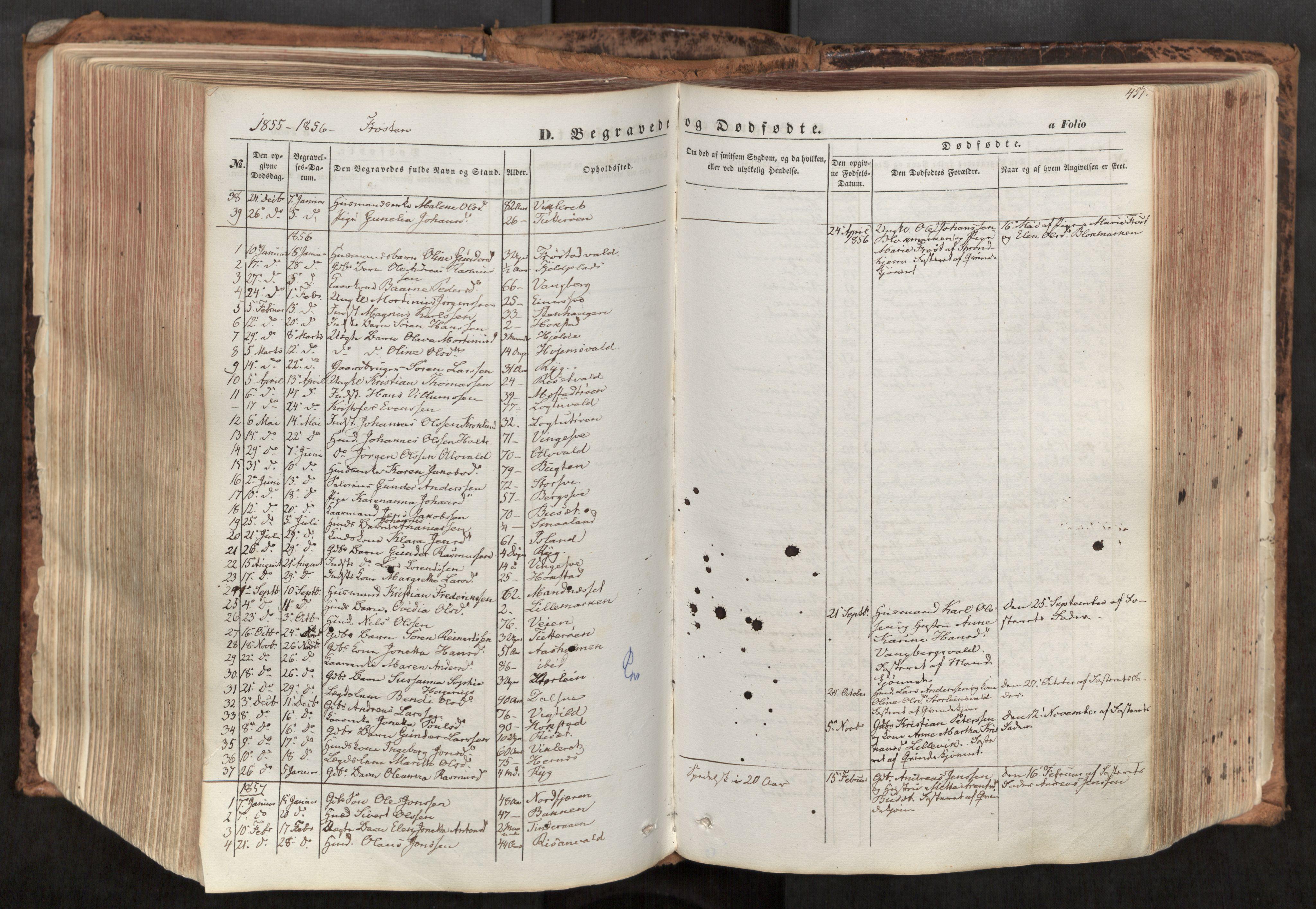 SAT, Ministerialprotokoller, klokkerbøker og fødselsregistre - Nord-Trøndelag, 713/L0116: Ministerialbok nr. 713A07, 1850-1877, s. 451