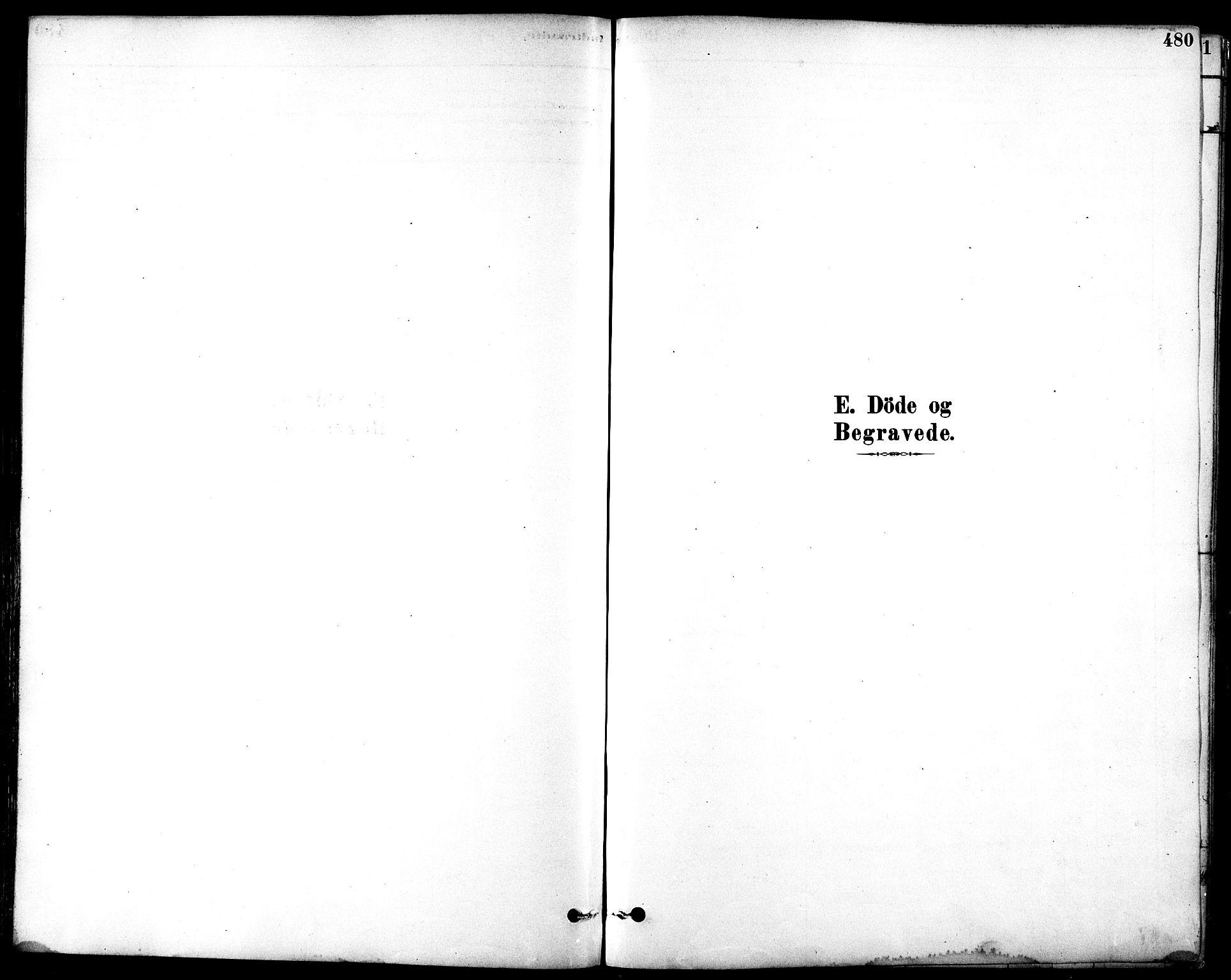 SAT, Ministerialprotokoller, klokkerbøker og fødselsregistre - Sør-Trøndelag, 601/L0058: Ministerialbok nr. 601A26, 1877-1891, s. 480
