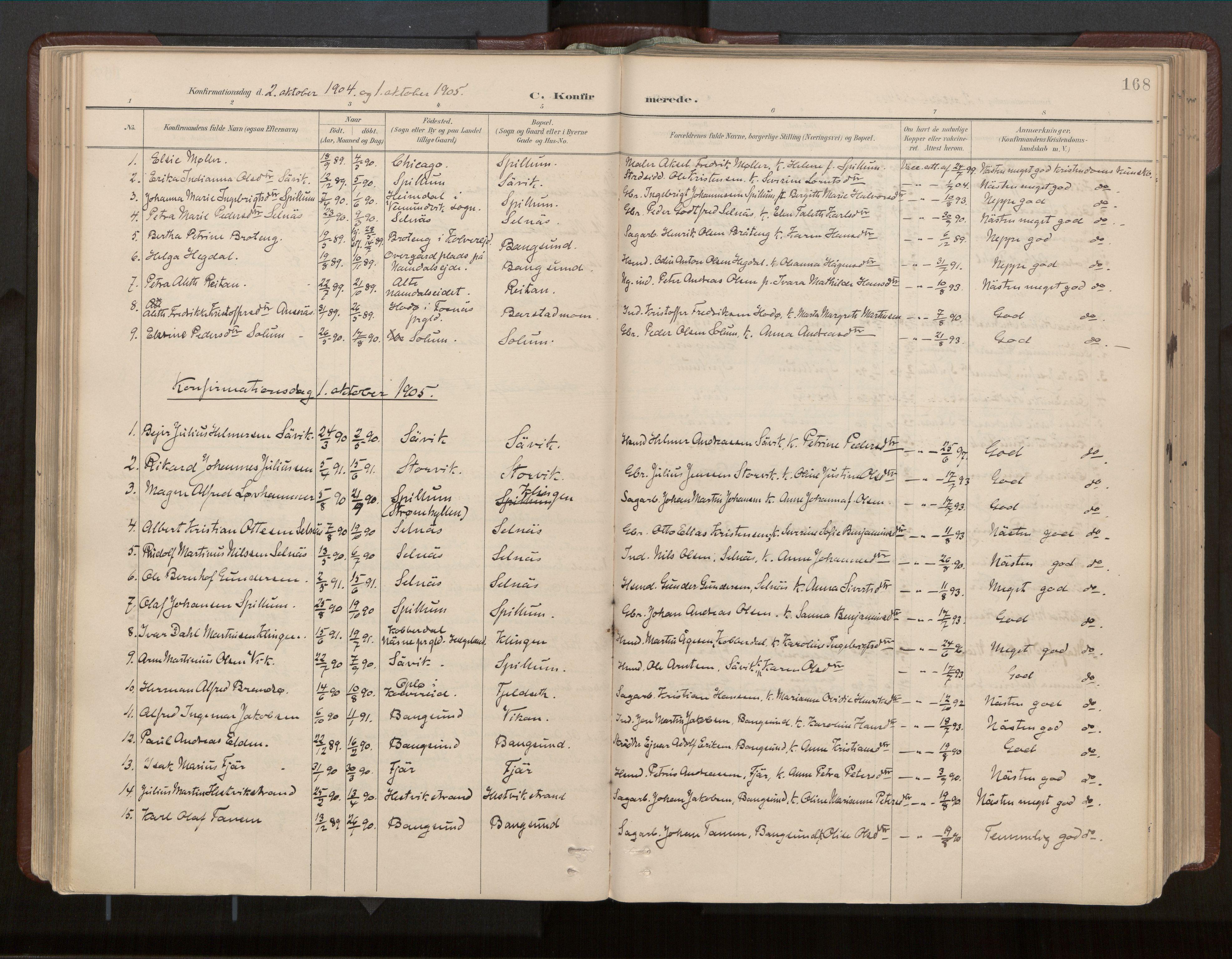SAT, Ministerialprotokoller, klokkerbøker og fødselsregistre - Nord-Trøndelag, 770/L0589: Ministerialbok nr. 770A03, 1887-1929, s. 168