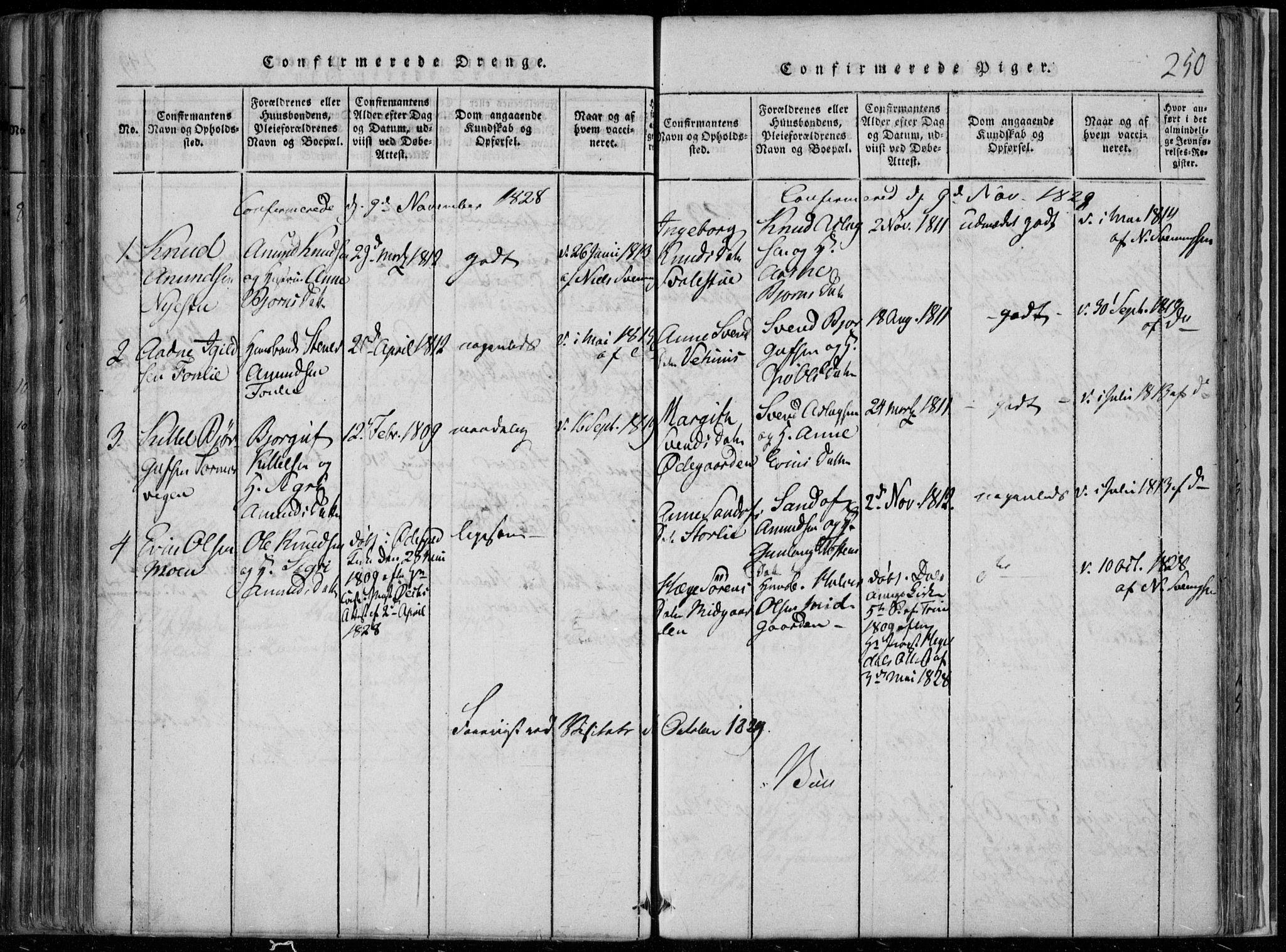 SAKO, Rauland kirkebøker, F/Fa/L0001: Ministerialbok nr. 1, 1814-1859, s. 250