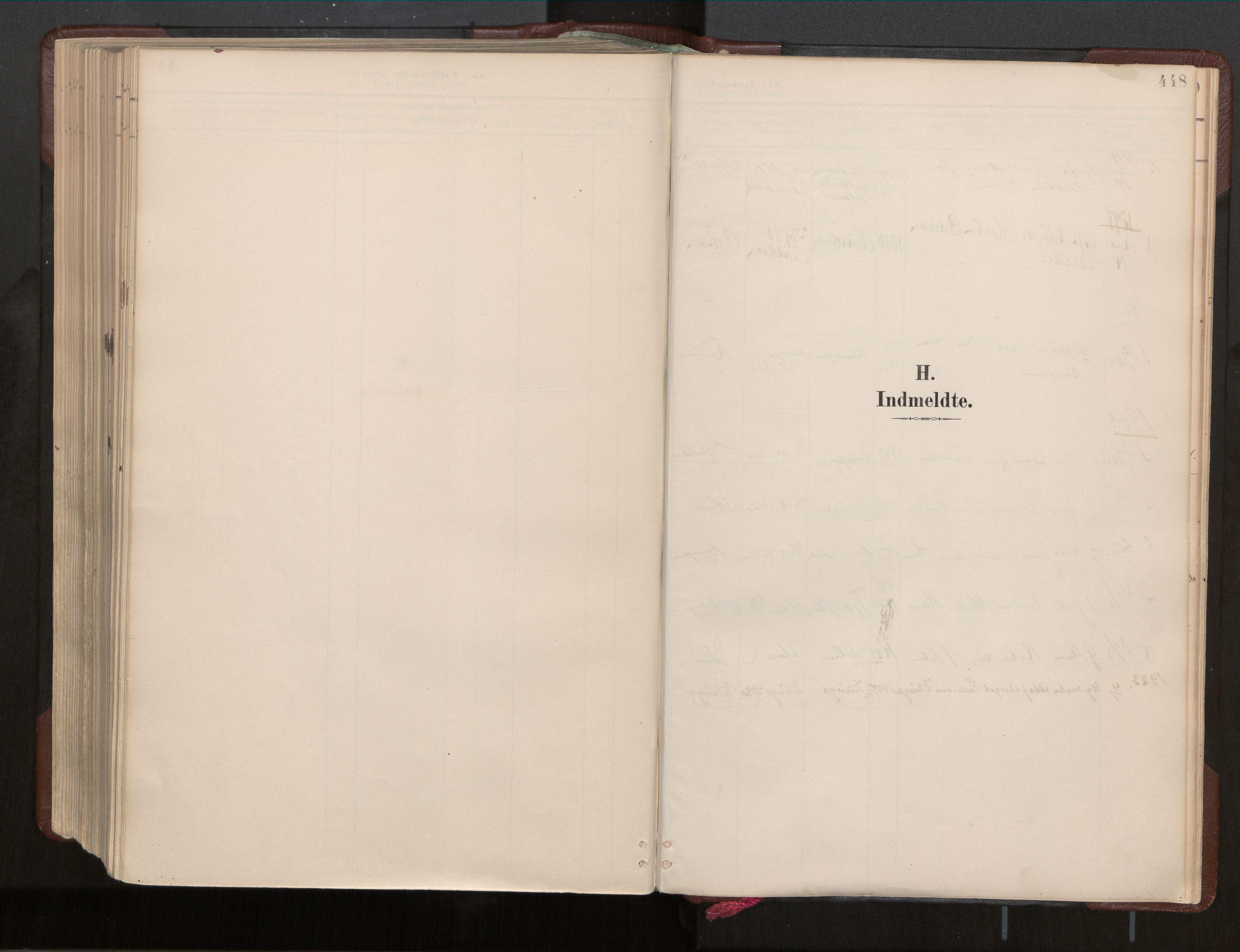 SAT, Ministerialprotokoller, klokkerbøker og fødselsregistre - Nord-Trøndelag, 770/L0589: Ministerialbok nr. 770A03, 1887-1929, s. 448
