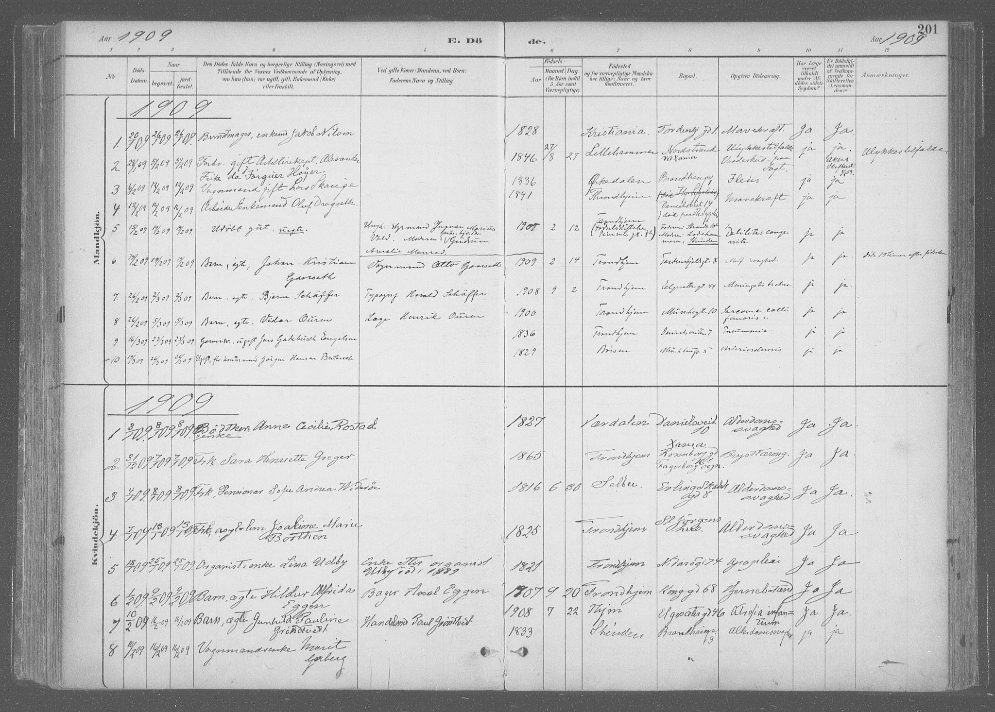 SAT, Ministerialprotokoller, klokkerbøker og fødselsregistre - Sør-Trøndelag, 601/L0064: Ministerialbok nr. 601A31, 1891-1911, s. 201