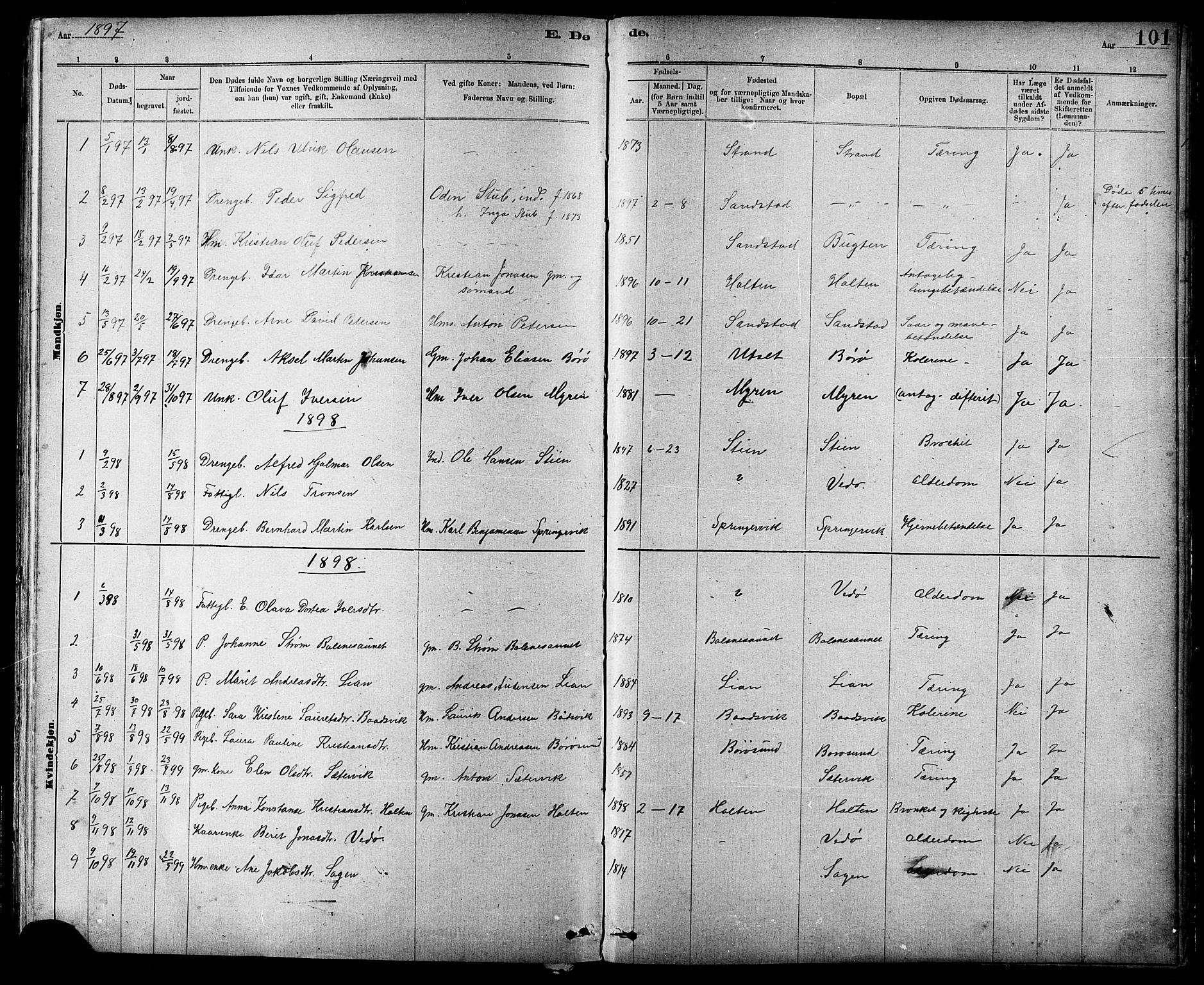 SAT, Ministerialprotokoller, klokkerbøker og fødselsregistre - Sør-Trøndelag, 639/L0573: Klokkerbok nr. 639C01, 1890-1905, s. 101