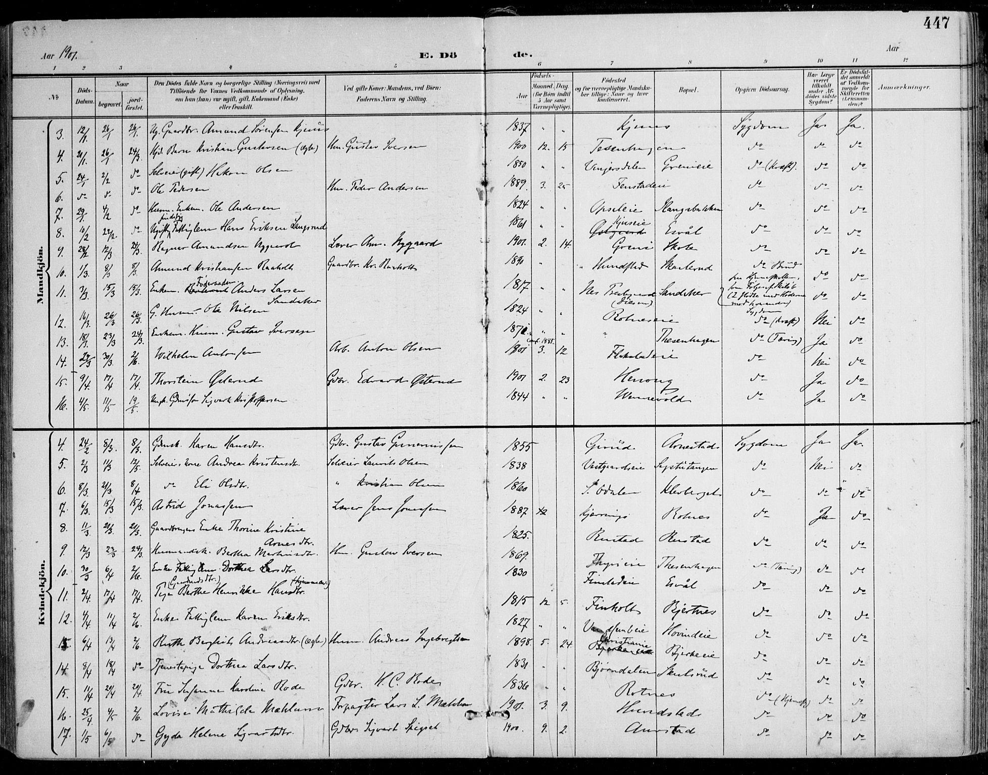 SAO, Nes prestekontor Kirkebøker, F/Fa/L0011: Ministerialbok nr. I 11, 1899-1918, s. 447