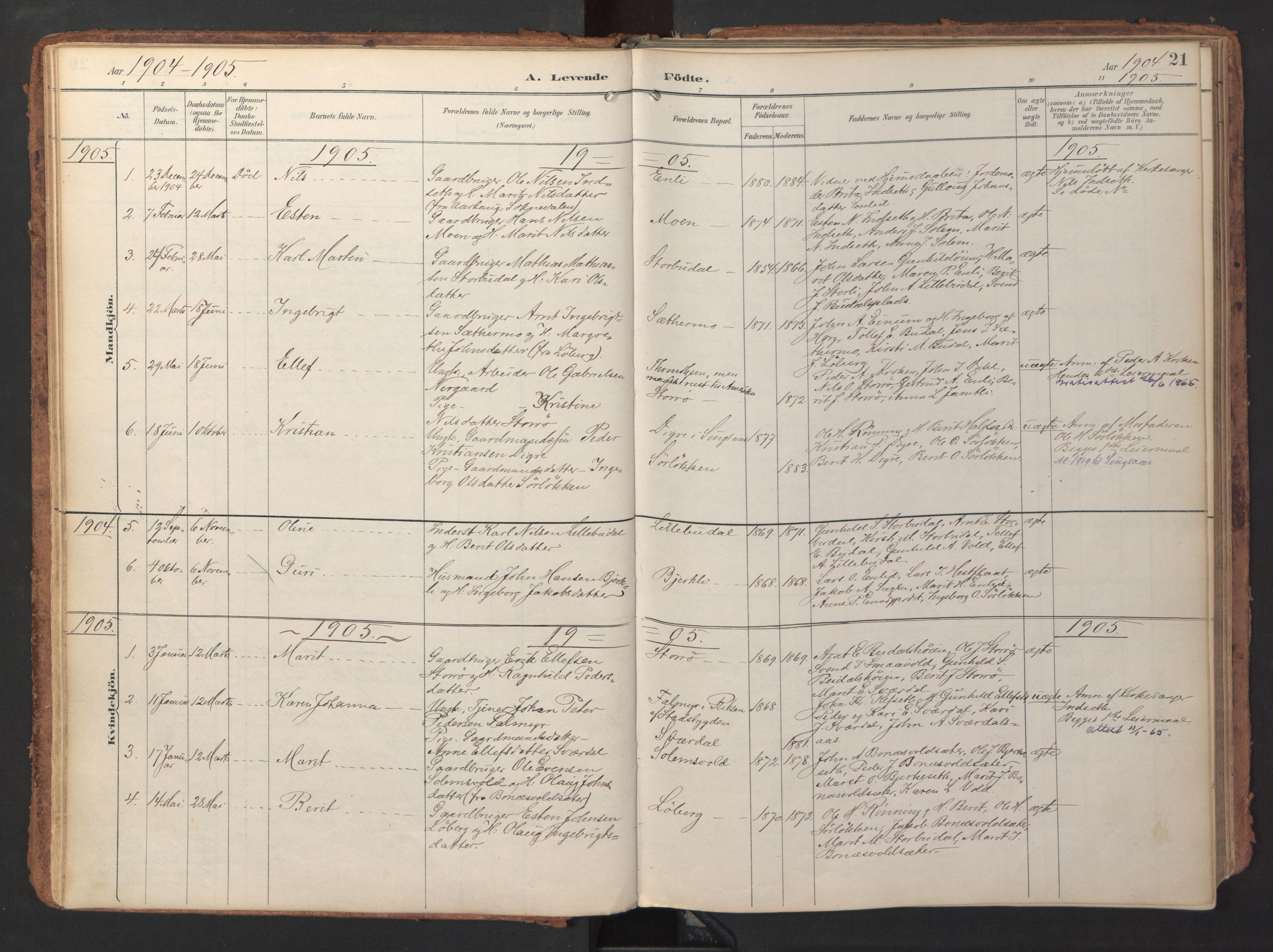 SAT, Ministerialprotokoller, klokkerbøker og fødselsregistre - Sør-Trøndelag, 690/L1050: Ministerialbok nr. 690A01, 1889-1929, s. 21