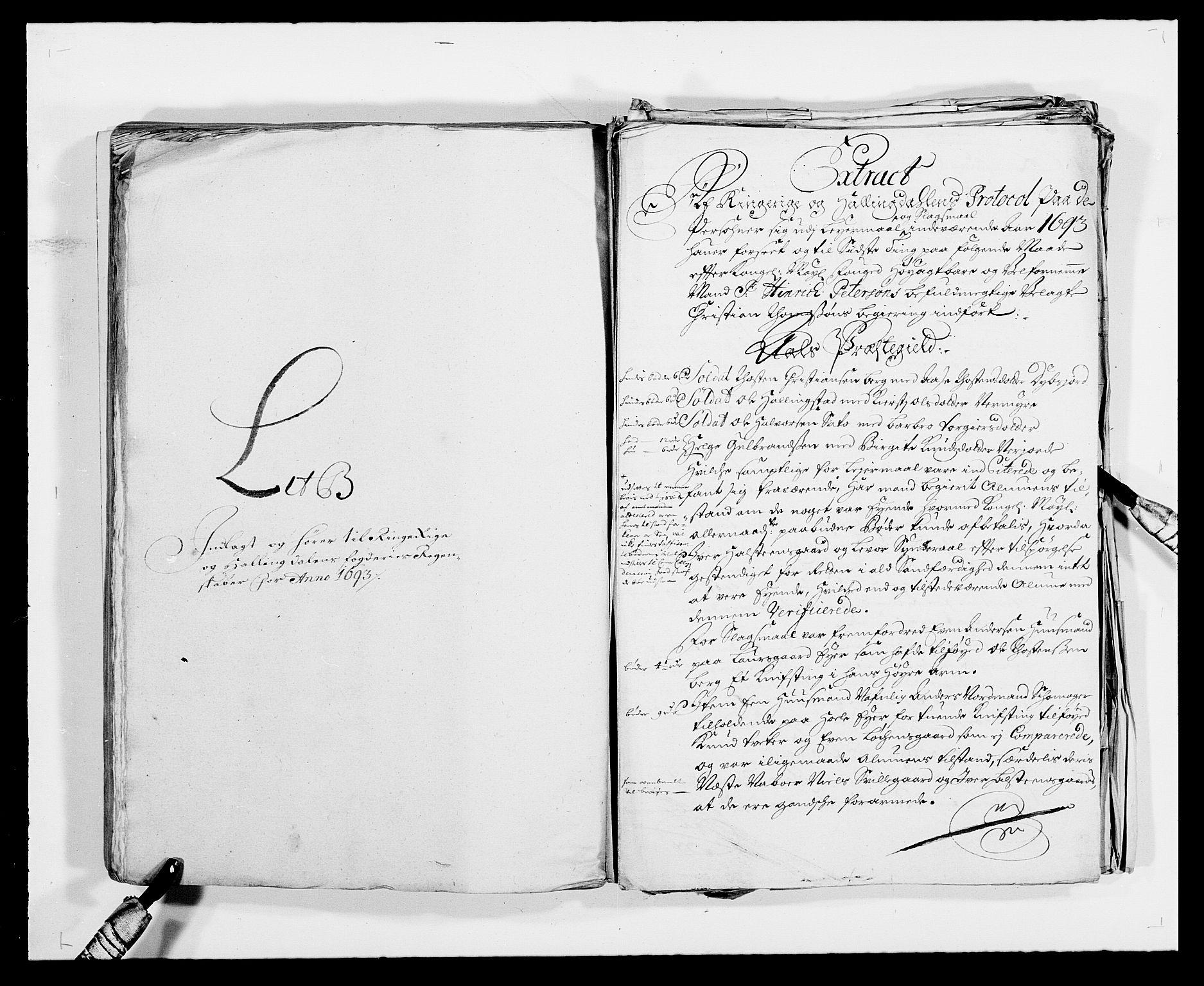 RA, Rentekammeret inntil 1814, Reviderte regnskaper, Fogderegnskap, R21/L1450: Fogderegnskap Ringerike og Hallingdal, 1693, s. 102