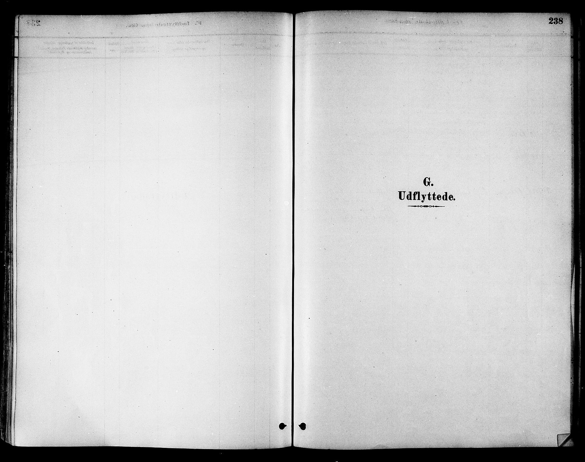 SAT, Ministerialprotokoller, klokkerbøker og fødselsregistre - Nord-Trøndelag, 786/L0686: Ministerialbok nr. 786A02, 1880-1887, s. 238