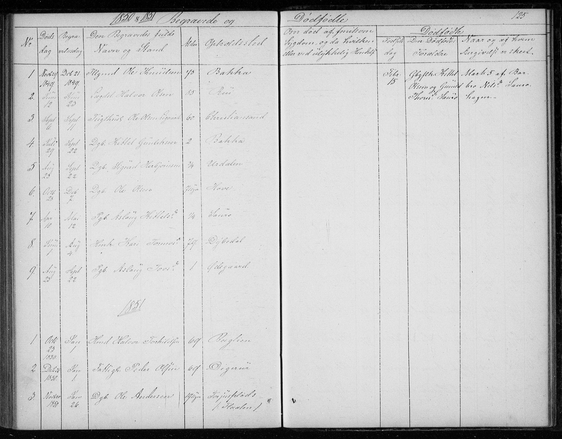 SAKO, Gransherad kirkebøker, F/Fb/L0003: Ministerialbok nr. II 3, 1844-1859, s. 125