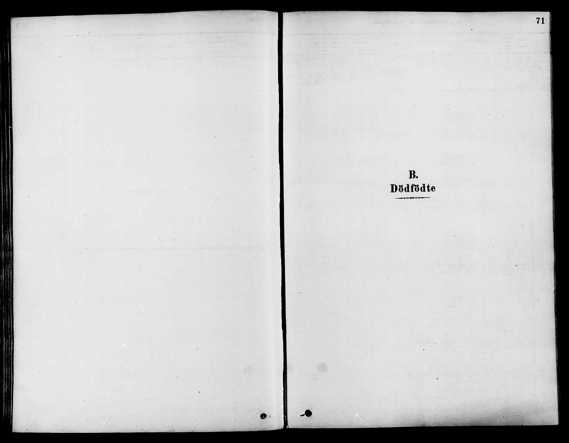 SAH, Søndre Land prestekontor, K/L0002: Ministerialbok nr. 2, 1878-1894, s. 71