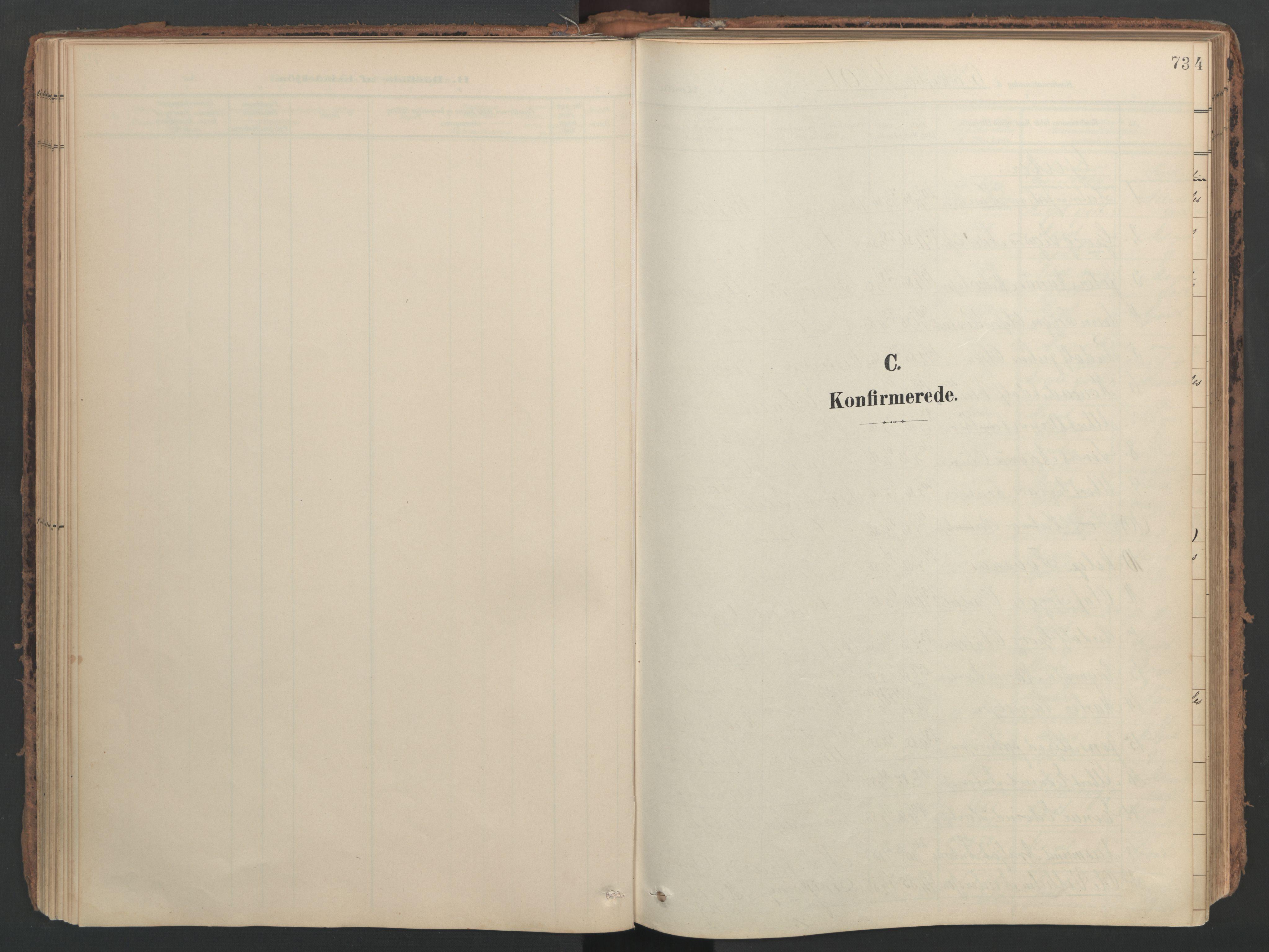 SAT, Ministerialprotokoller, klokkerbøker og fødselsregistre - Nord-Trøndelag, 741/L0397: Ministerialbok nr. 741A11, 1901-1911, s. 73