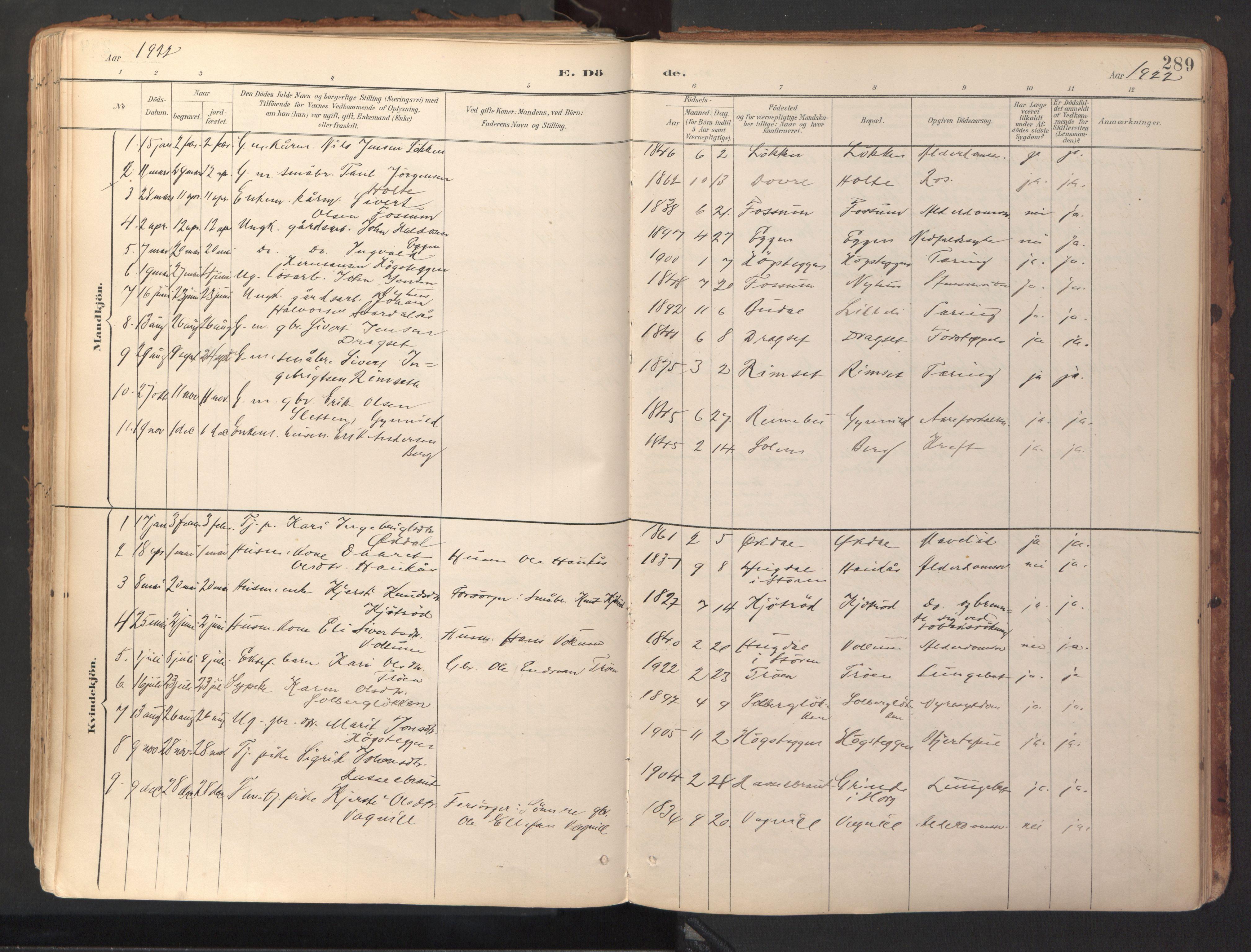 SAT, Ministerialprotokoller, klokkerbøker og fødselsregistre - Sør-Trøndelag, 689/L1041: Ministerialbok nr. 689A06, 1891-1923, s. 289