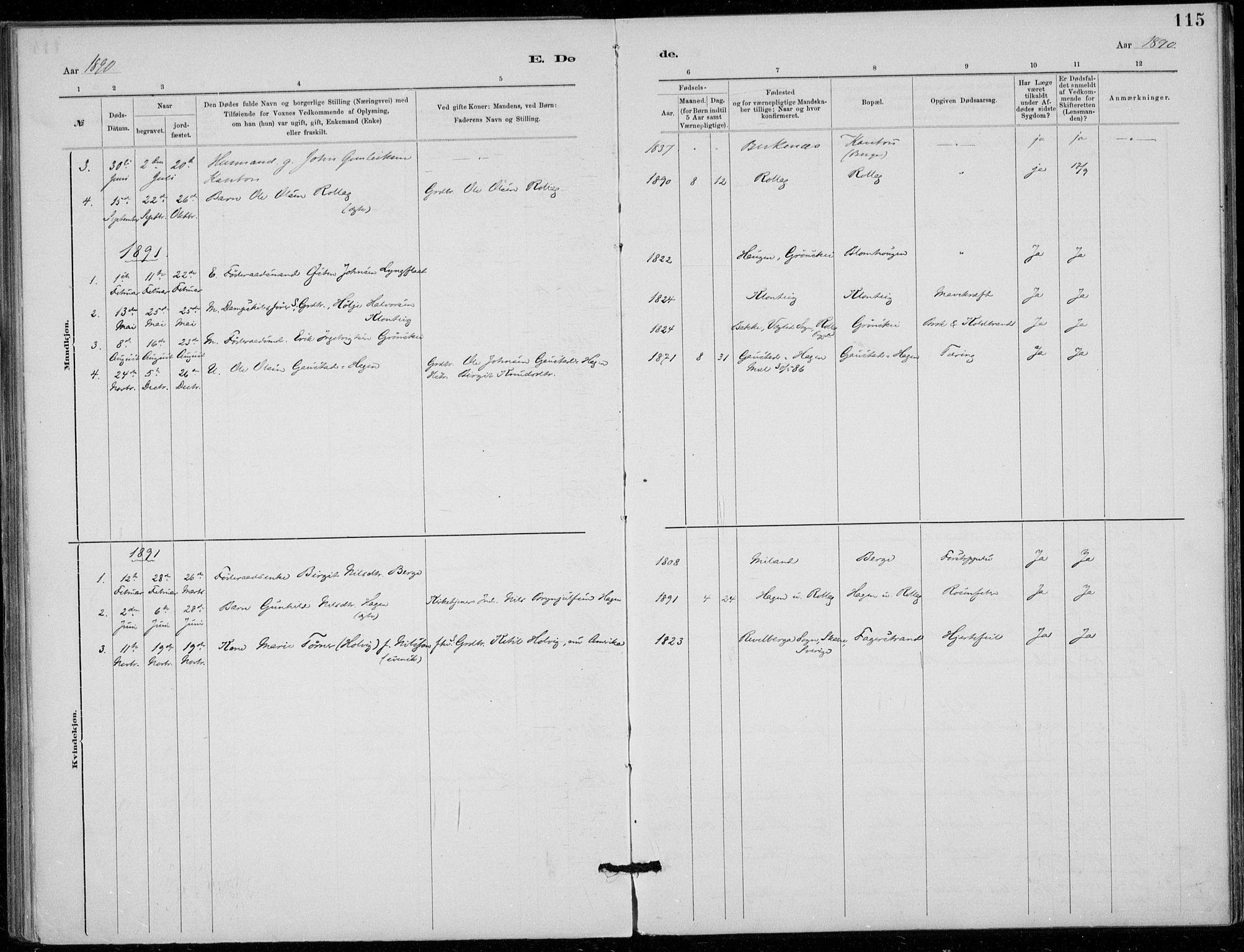 SAKO, Tinn kirkebøker, F/Fb/L0002: Ministerialbok nr. II 2, 1878-1917, s. 115