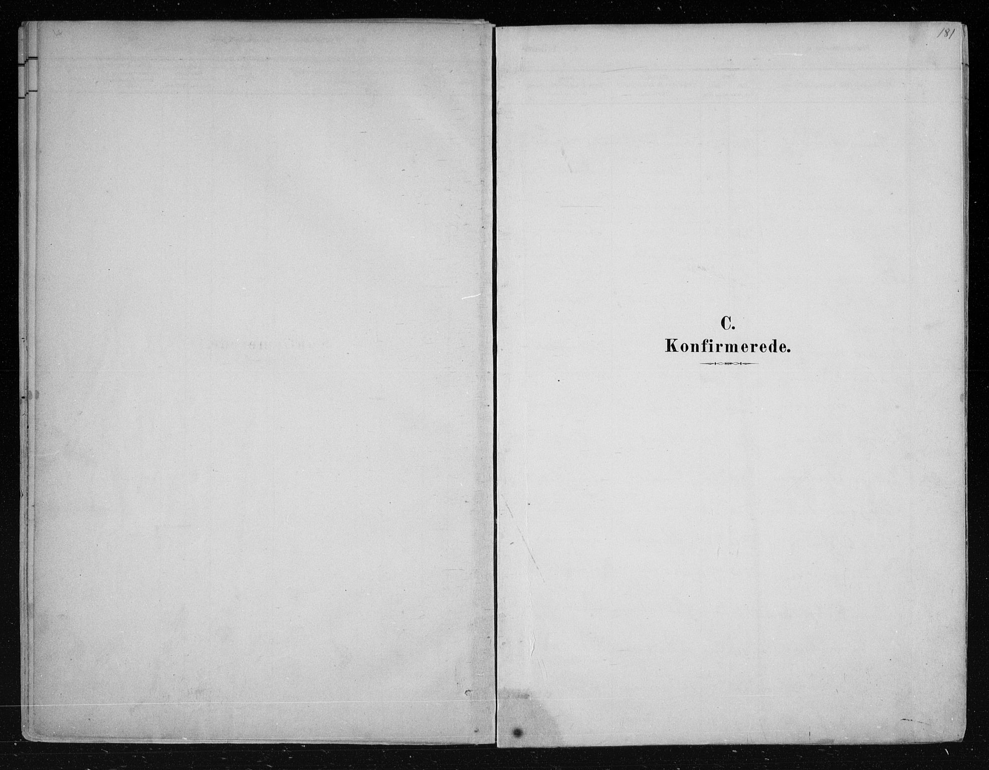 SAKO, Nes kirkebøker, F/Fa/L0011: Ministerialbok nr. 11, 1881-1912, s. 181