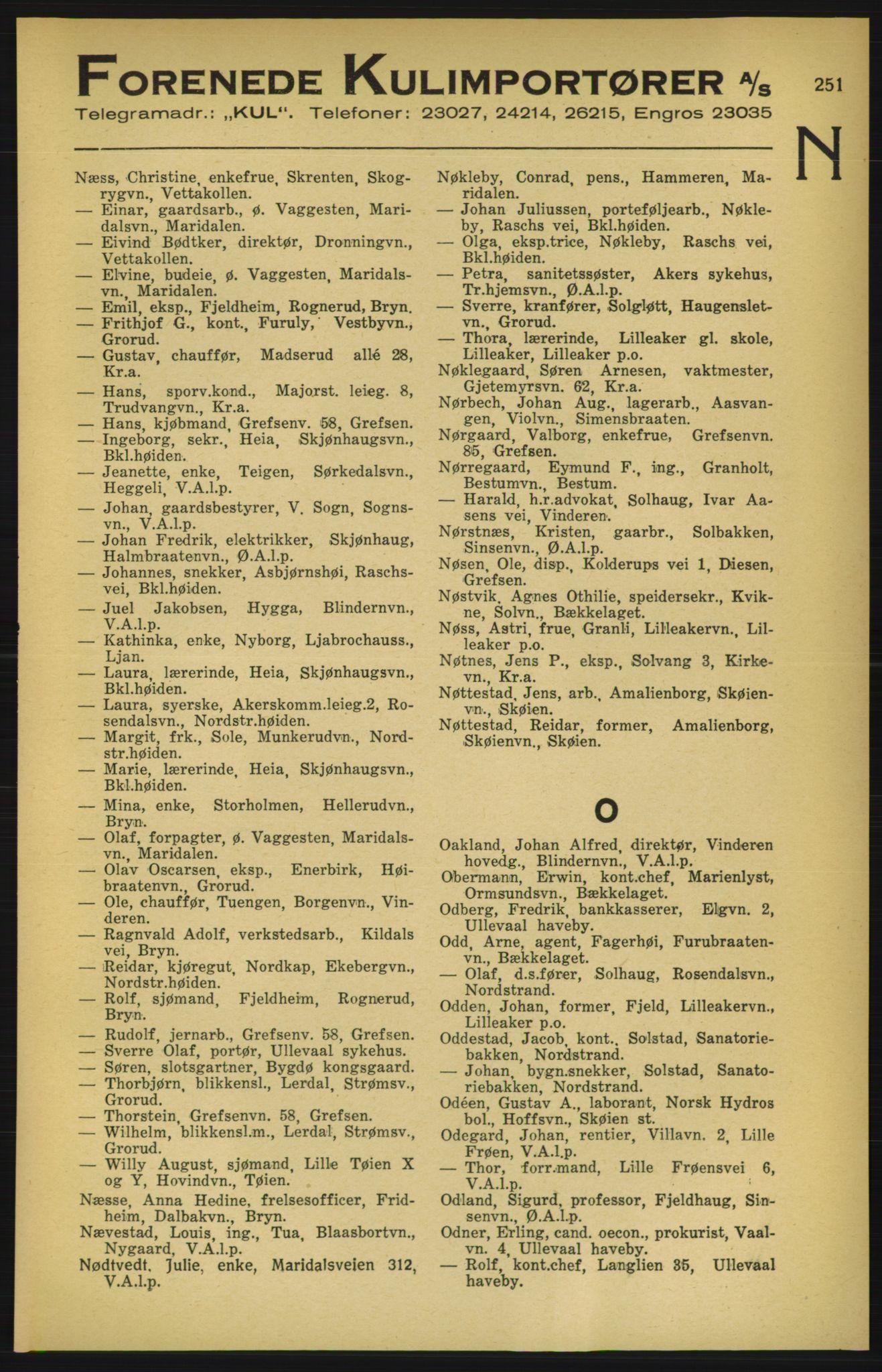 PUBL, Aker adressebok/adressekalender, 1924-1925, s. 251