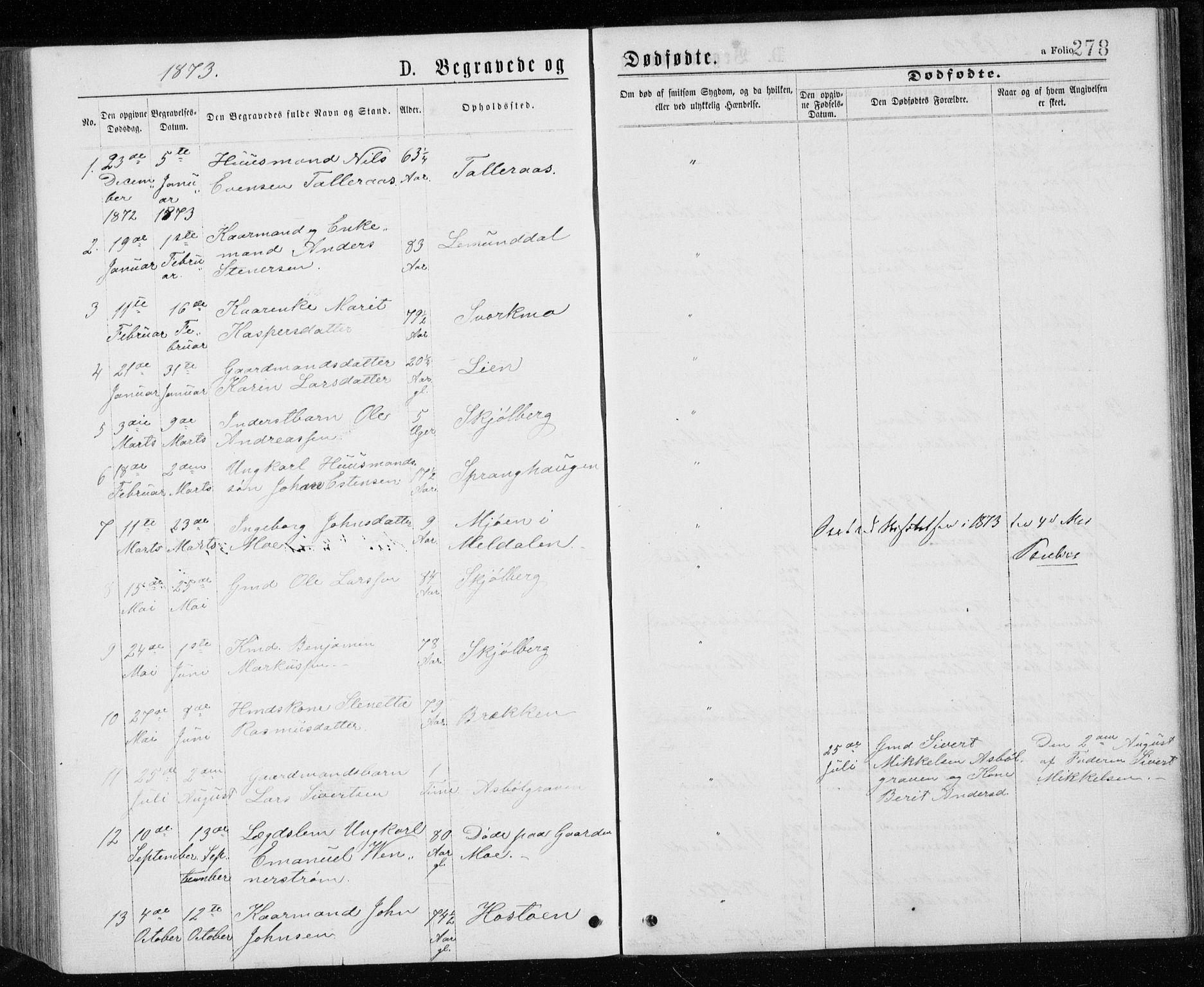 SAT, Ministerialprotokoller, klokkerbøker og fødselsregistre - Sør-Trøndelag, 671/L0843: Klokkerbok nr. 671C02, 1873-1892, s. 278