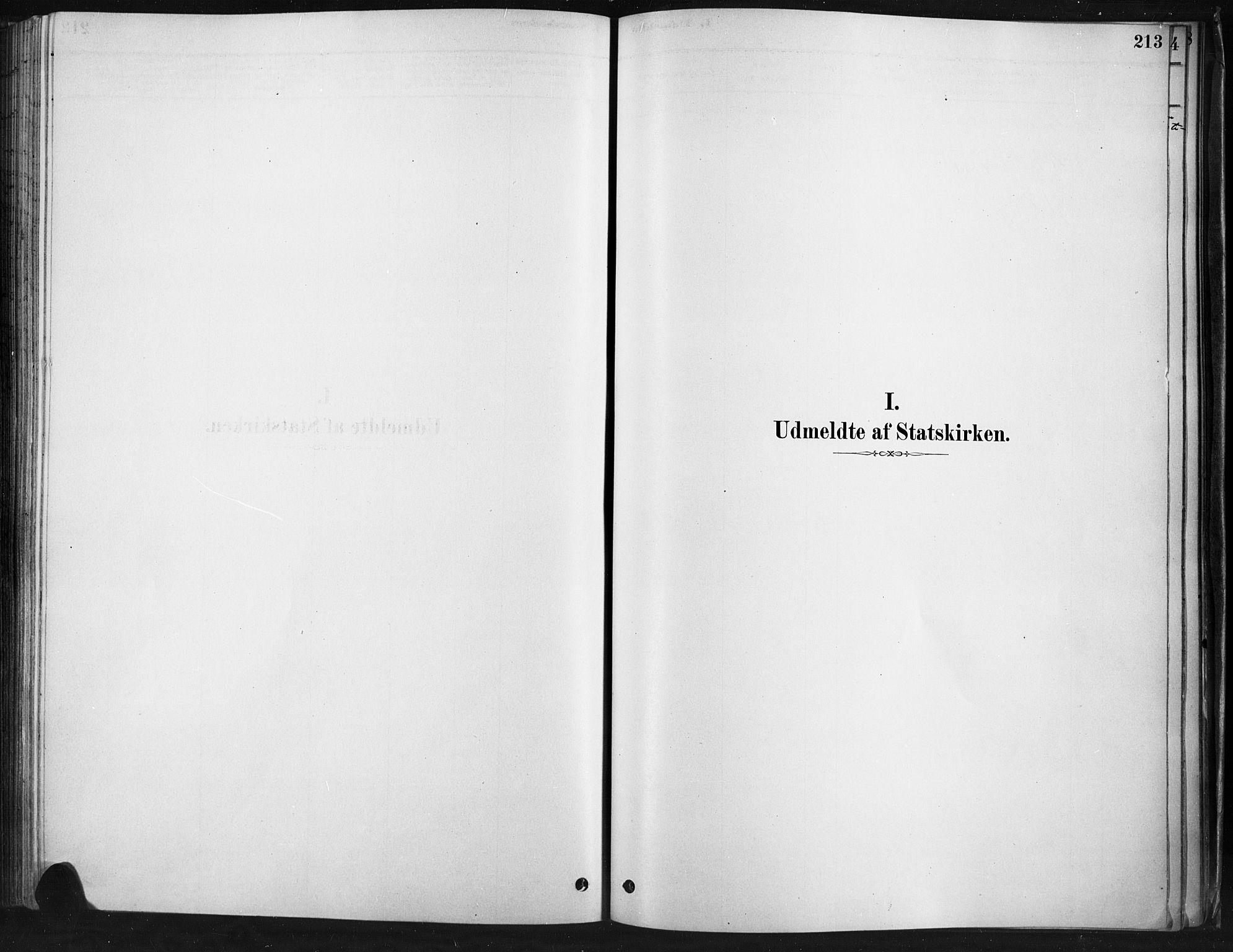 SAH, Ringebu prestekontor, Ministerialbok nr. 9, 1878-1898, s. 213
