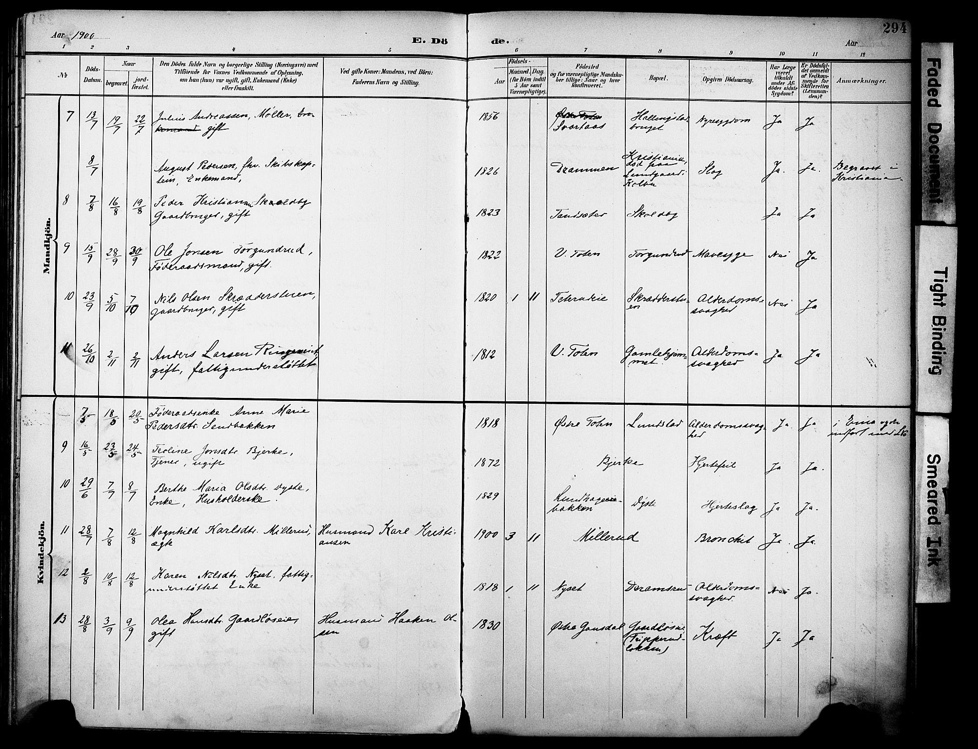 SAH, Vestre Toten prestekontor, H/Ha/Haa/L0013: Ministerialbok nr. 13, 1895-1911, s. 294
