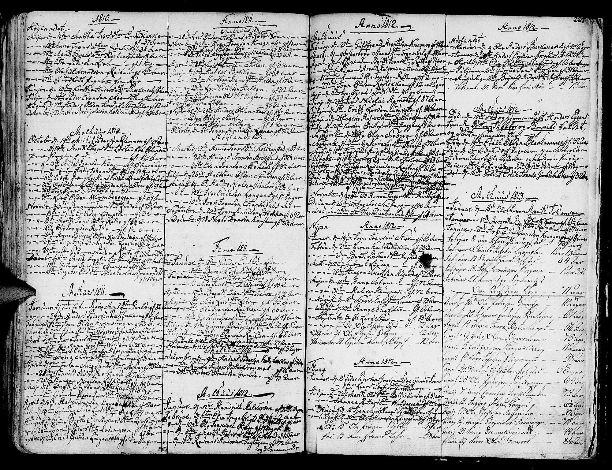 SAT, Ministerialprotokoller, klokkerbøker og fødselsregistre - Sør-Trøndelag, 691/L1061: Ministerialbok nr. 691A02 /1, 1768-1815, s. 224