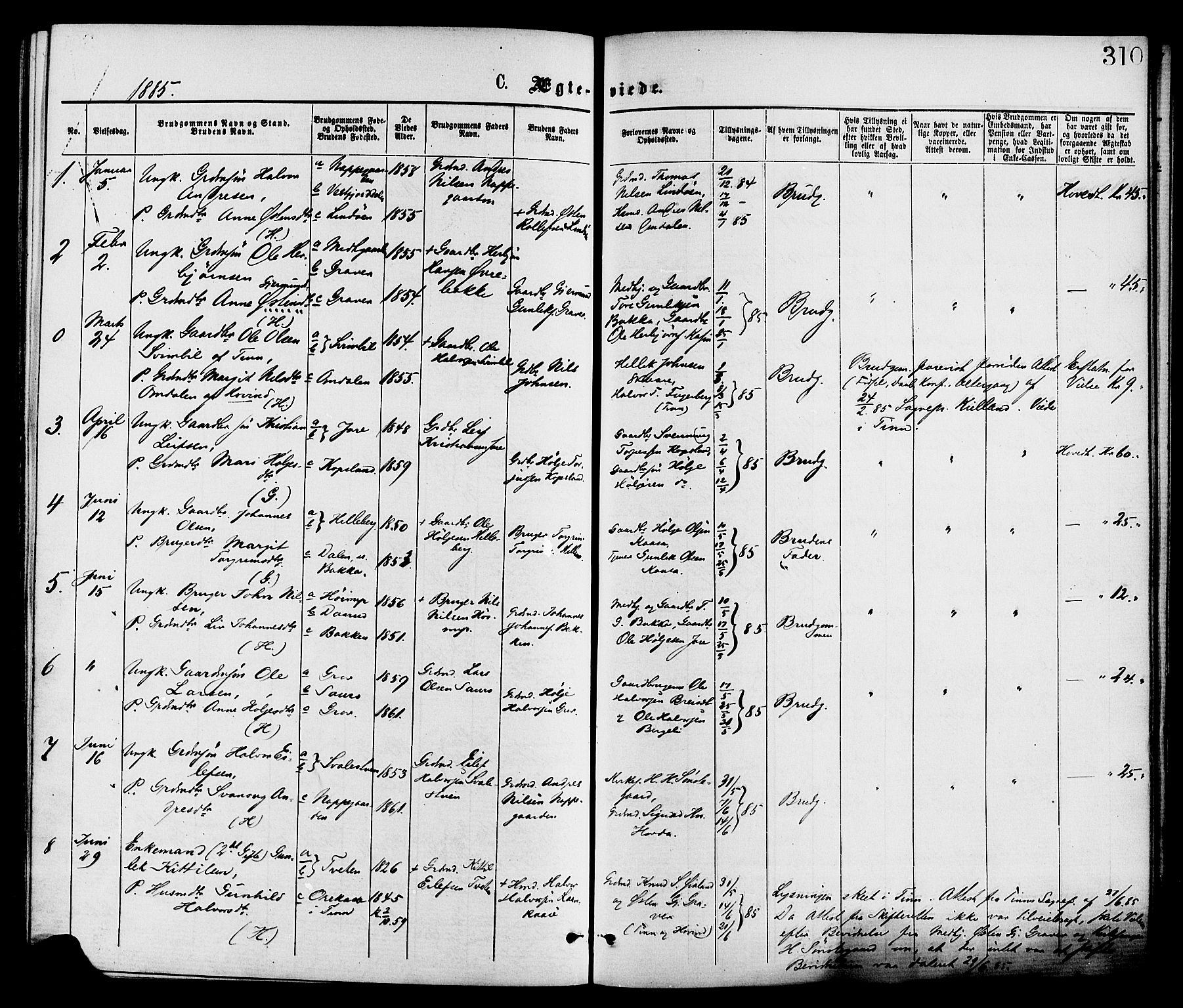 SAKO, Gransherad kirkebøker, F/Fa/L0004: Ministerialbok nr. I 4, 1871-1886, s. 310