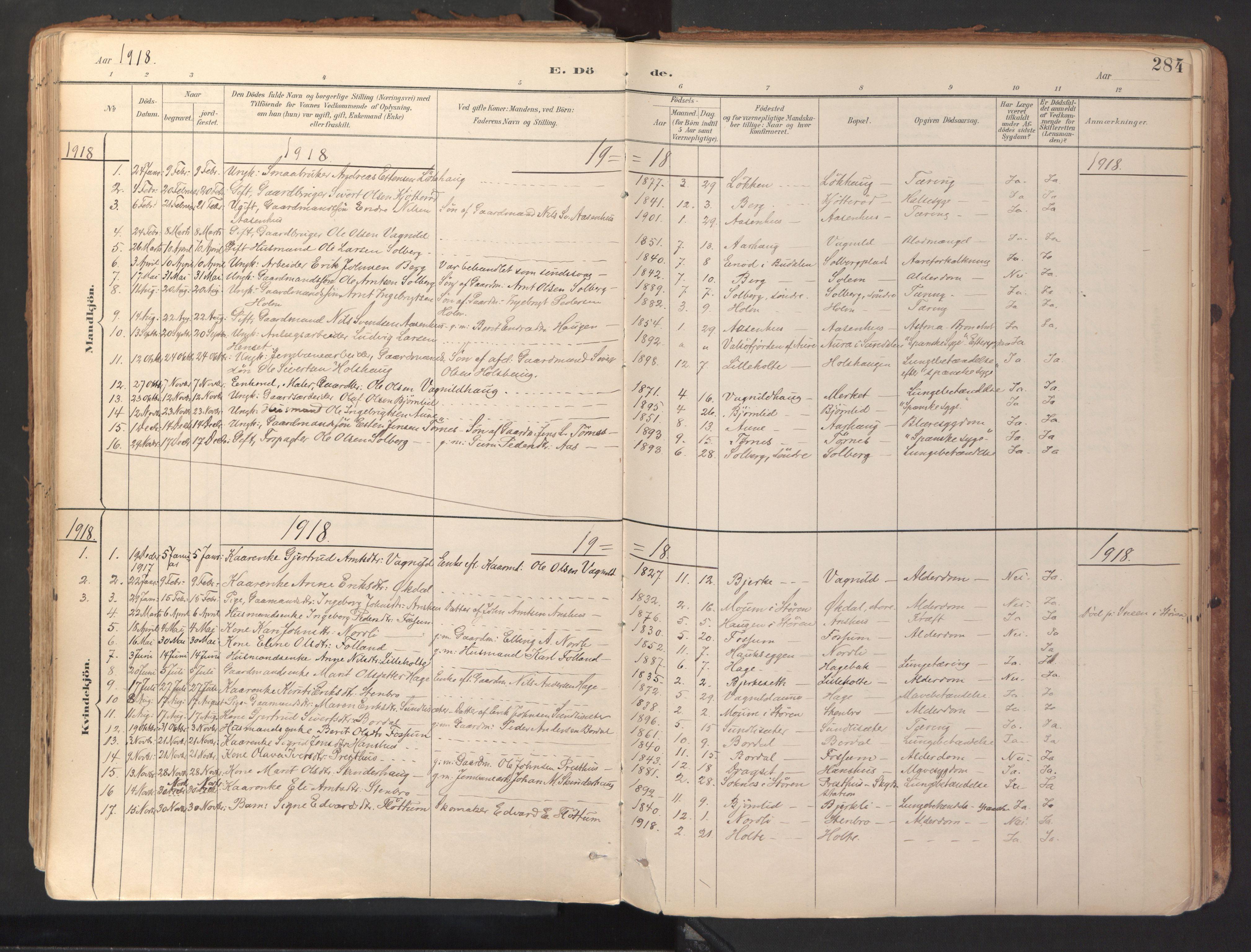 SAT, Ministerialprotokoller, klokkerbøker og fødselsregistre - Sør-Trøndelag, 689/L1041: Ministerialbok nr. 689A06, 1891-1923, s. 284