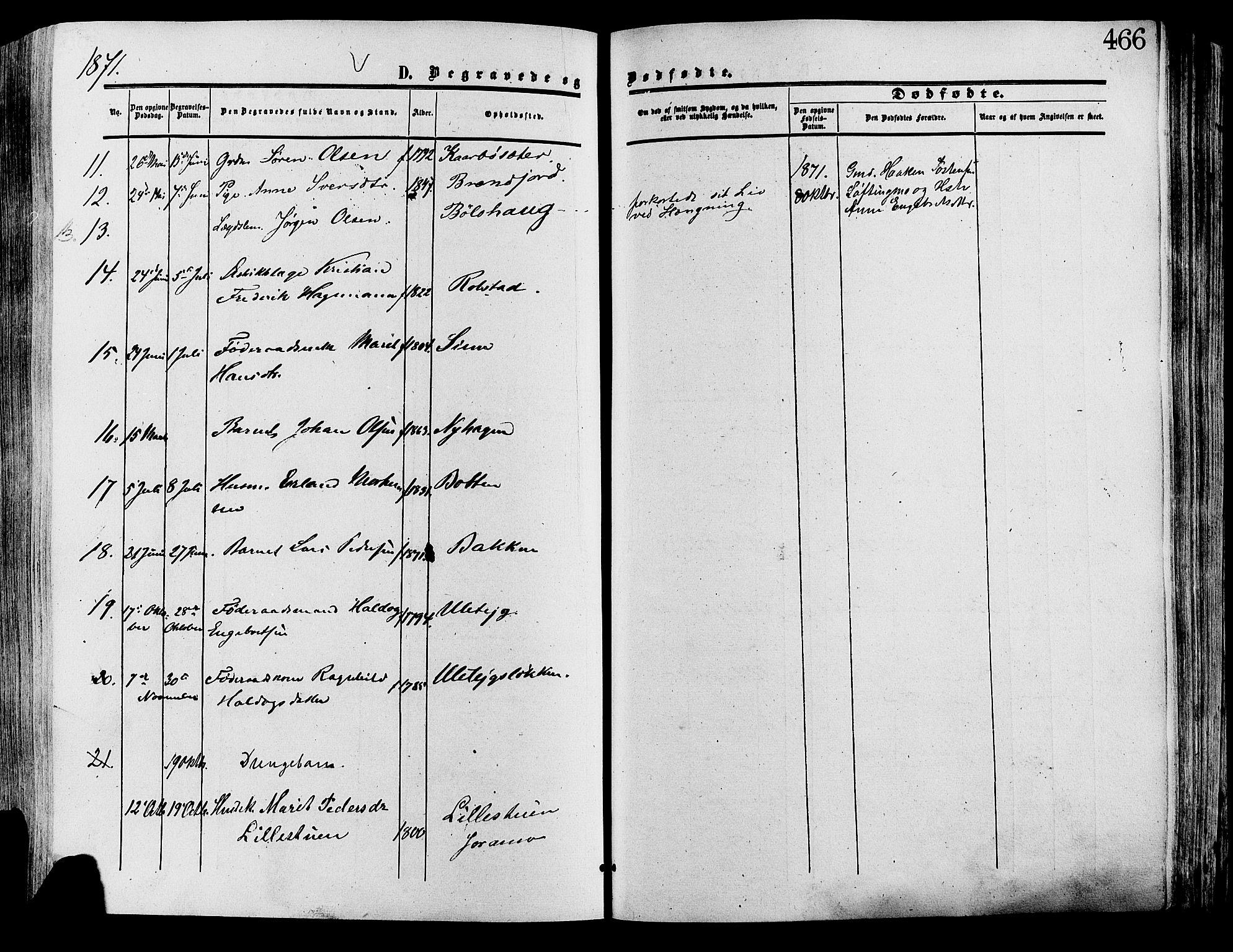 SAH, Lesja prestekontor, Ministerialbok nr. 8, 1854-1880, s. 466