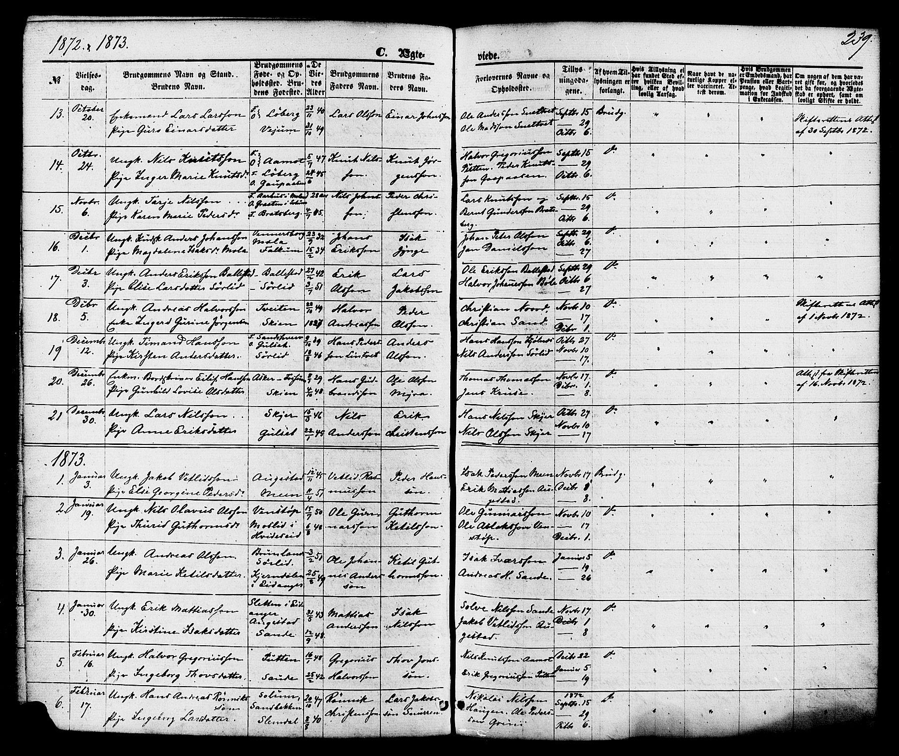 SAKO, Gjerpen kirkebøker, F/Fa/L0009: Ministerialbok nr. 9, 1872-1885, s. 239