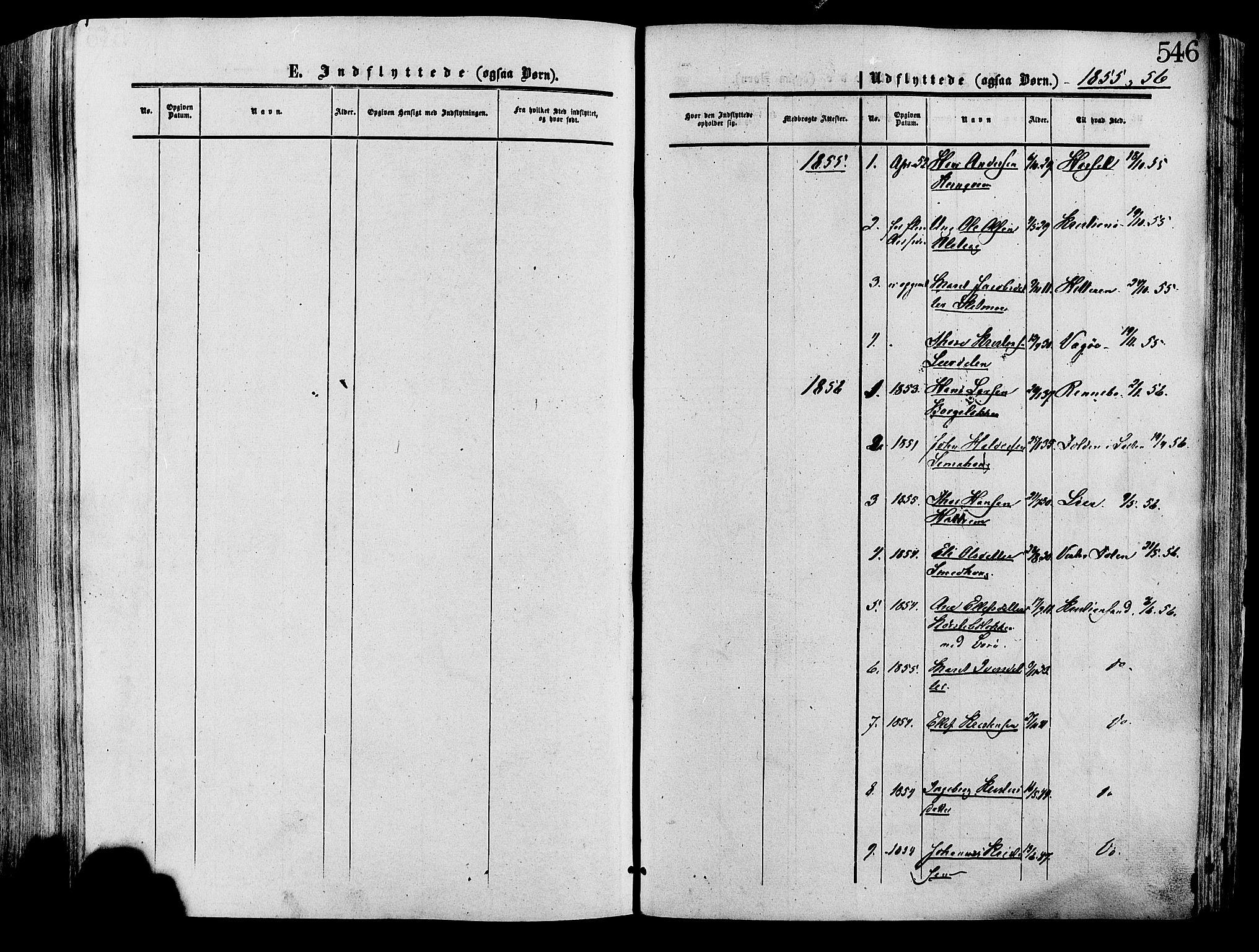 SAH, Lesja prestekontor, Ministerialbok nr. 8, 1854-1880, s. 546