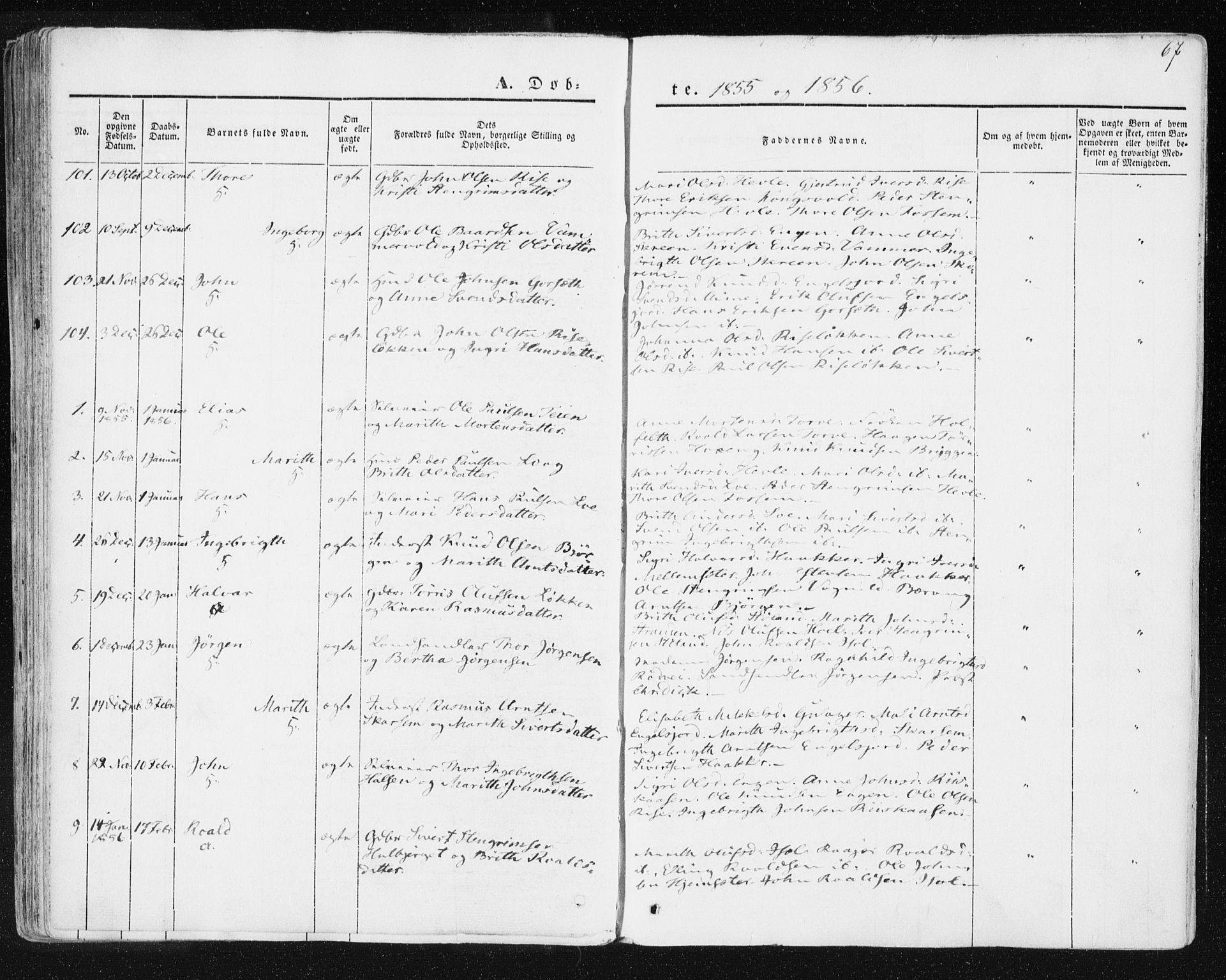 SAT, Ministerialprotokoller, klokkerbøker og fødselsregistre - Sør-Trøndelag, 678/L0899: Ministerialbok nr. 678A08, 1848-1872, s. 67
