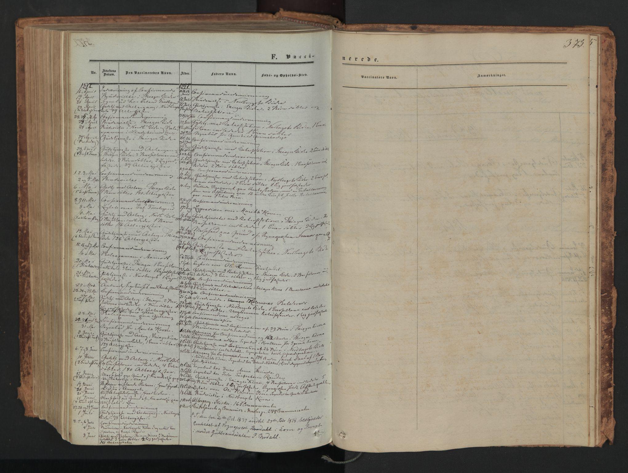SAH, Skjåk prestekontor, Ministerialbok nr. 1, 1863-1879, s. 373